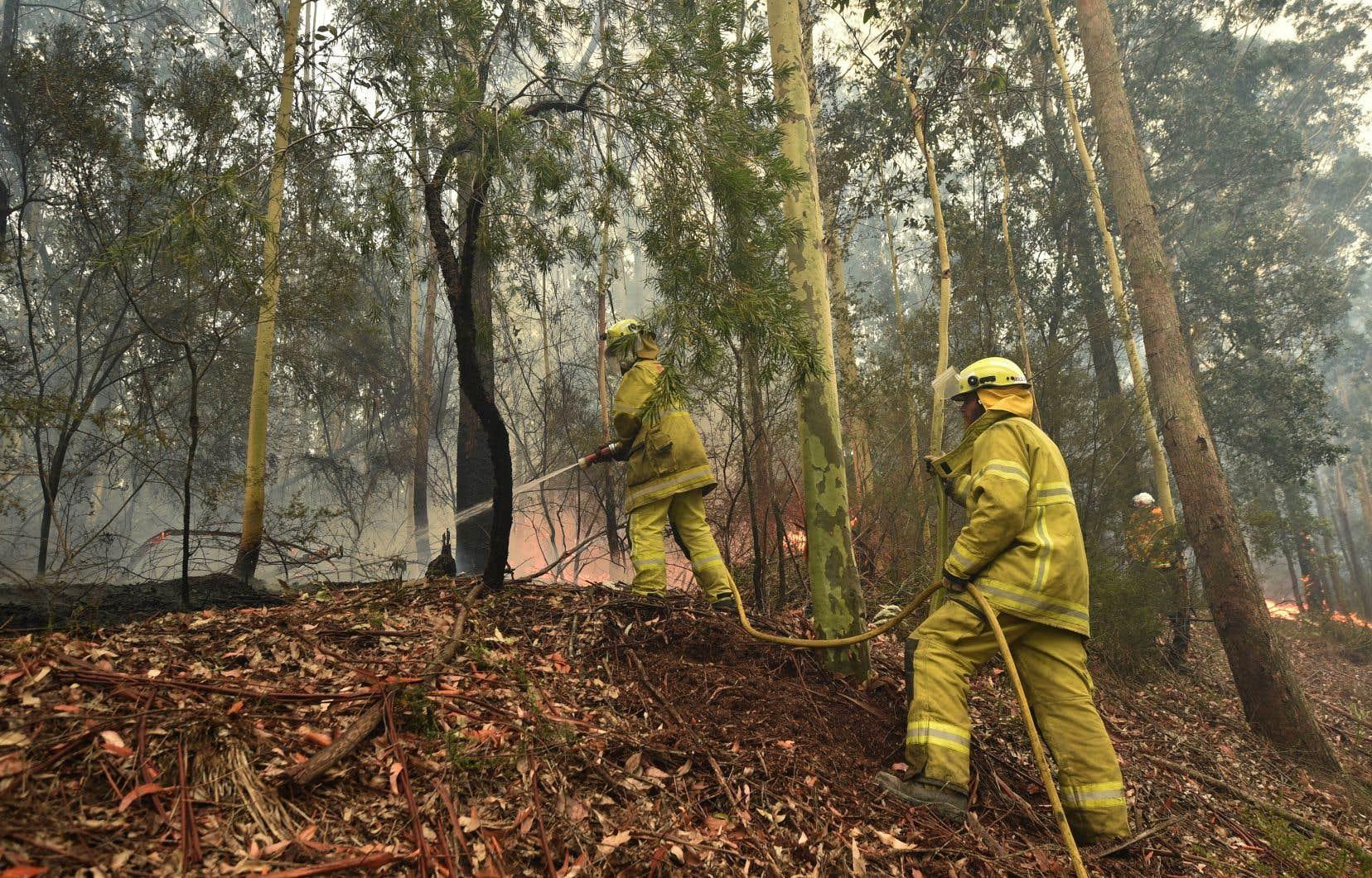 Près de 200 incendies continuent de brûler dimanche, souvent hors de contrôle, mais peu d'entre eux ont déclenché des avertissements d'urgence.