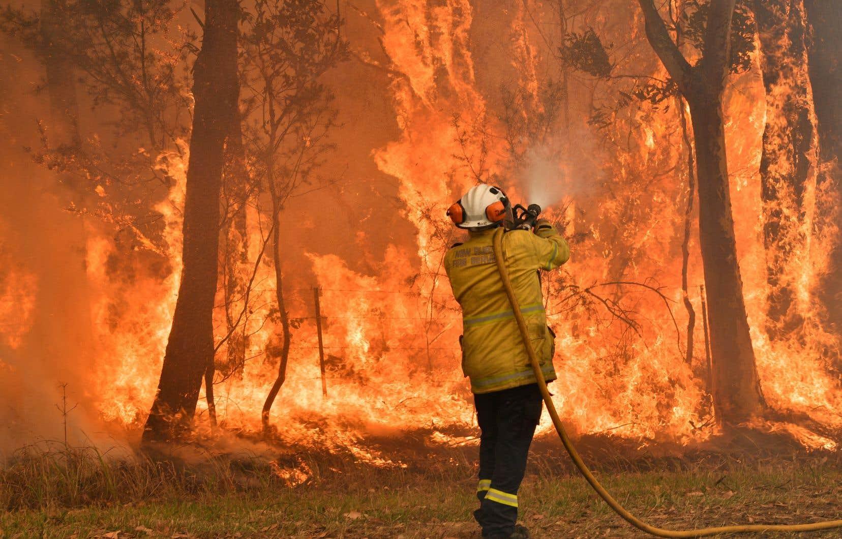 Un méga-incendie a été maîtrisé en début de semaine mais 150 foyers continuent de dévaster le pays continent.