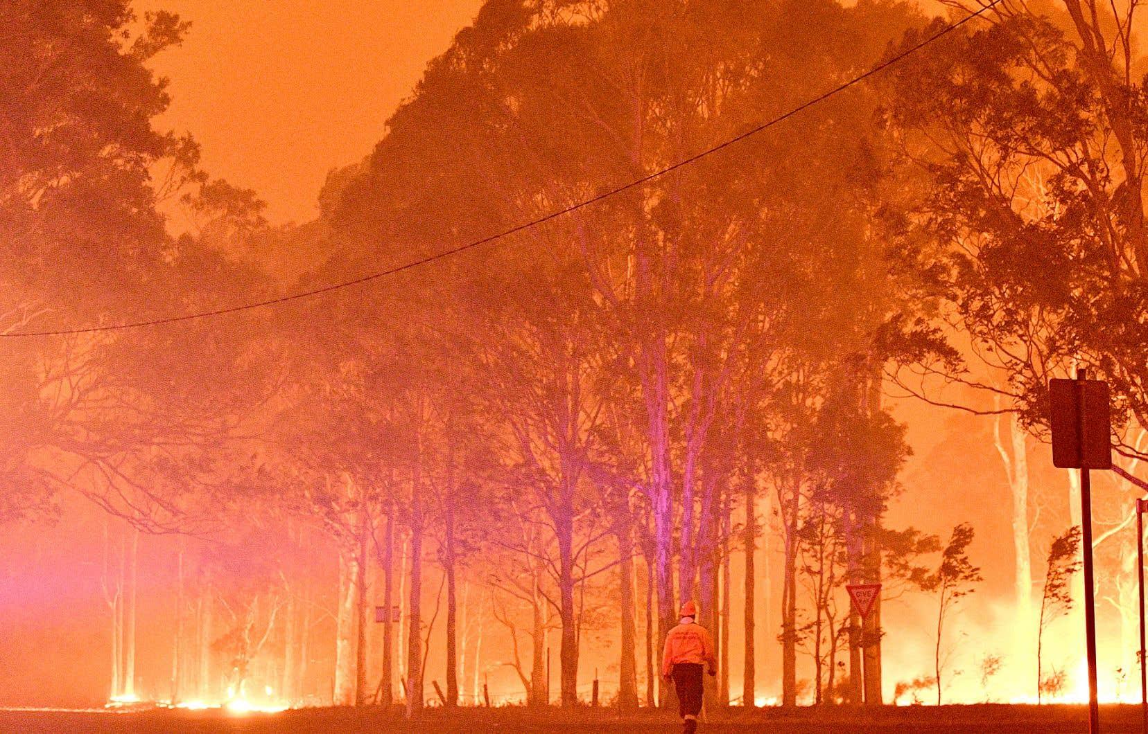 L'année qui vient de s'achever a été la plus chaude dans le monde après 2016, a rapporté mercredi l'Organisation météorologique mondiale. Sur la photo, un incendie de forêt attisé par la chaleur accablante dans le sud-est de l'Australie.