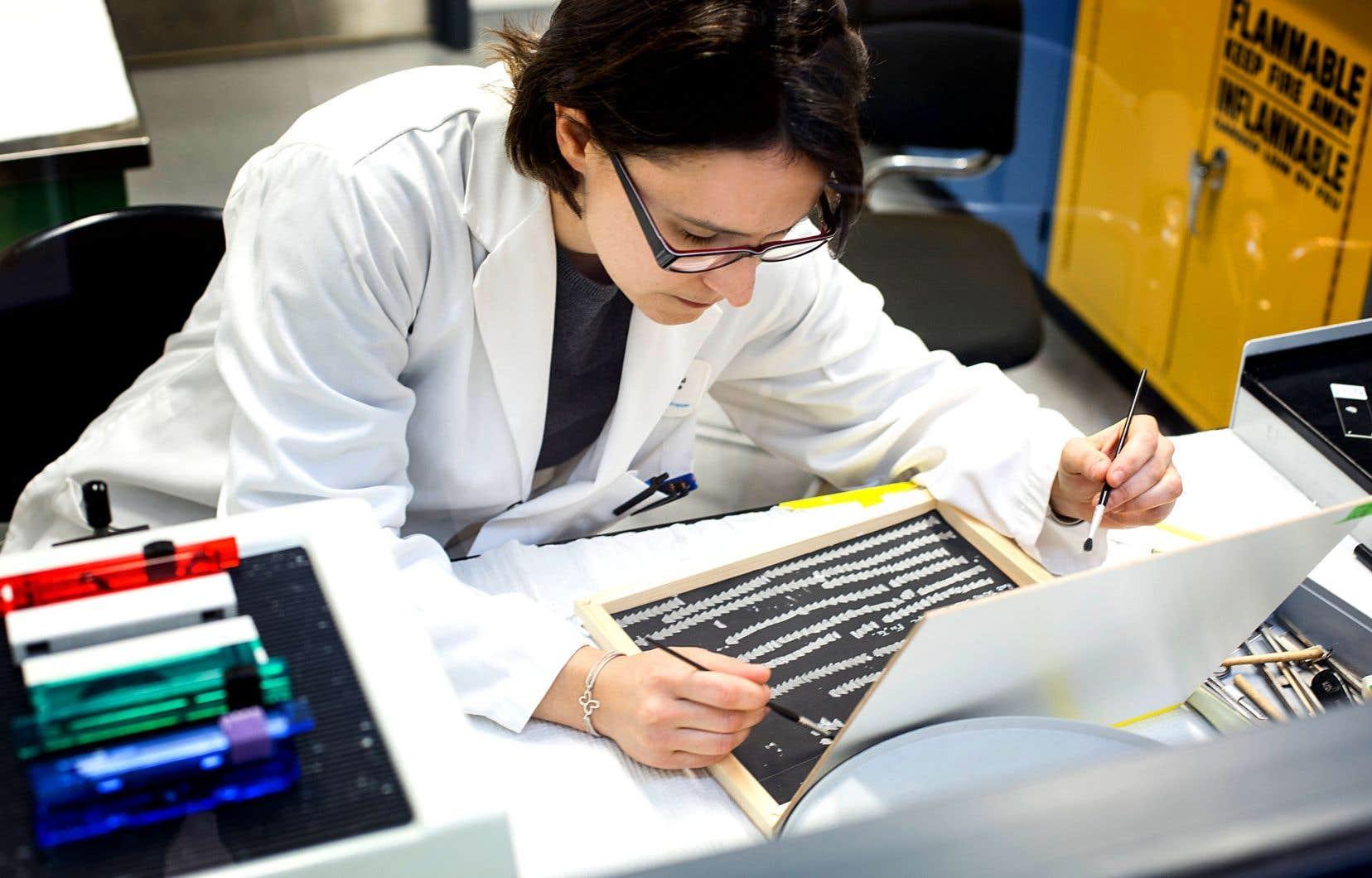 Géraldine Delbès, chercheuse en toxicologie de la reproduction