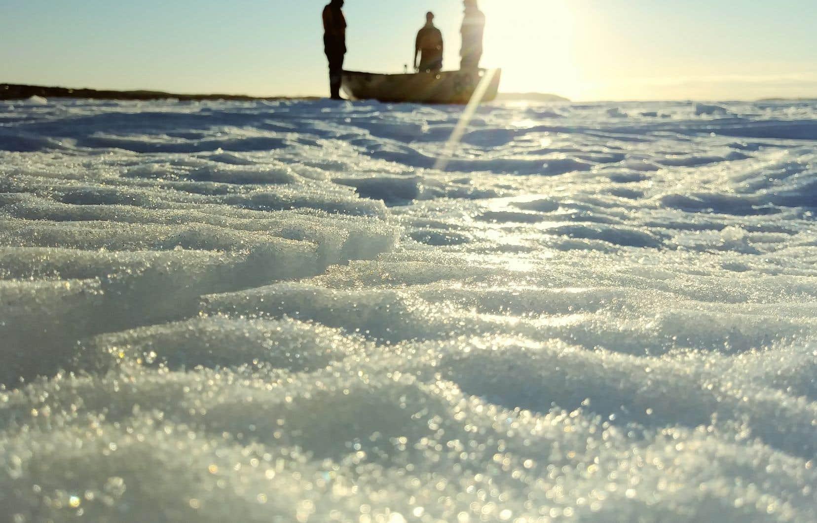 Utilisation d'un canot à glace par un professeur de l'ISMER-UQAR et son équipe pour l'étude et la modélisation des interactions entre les vagues et la glace de mer