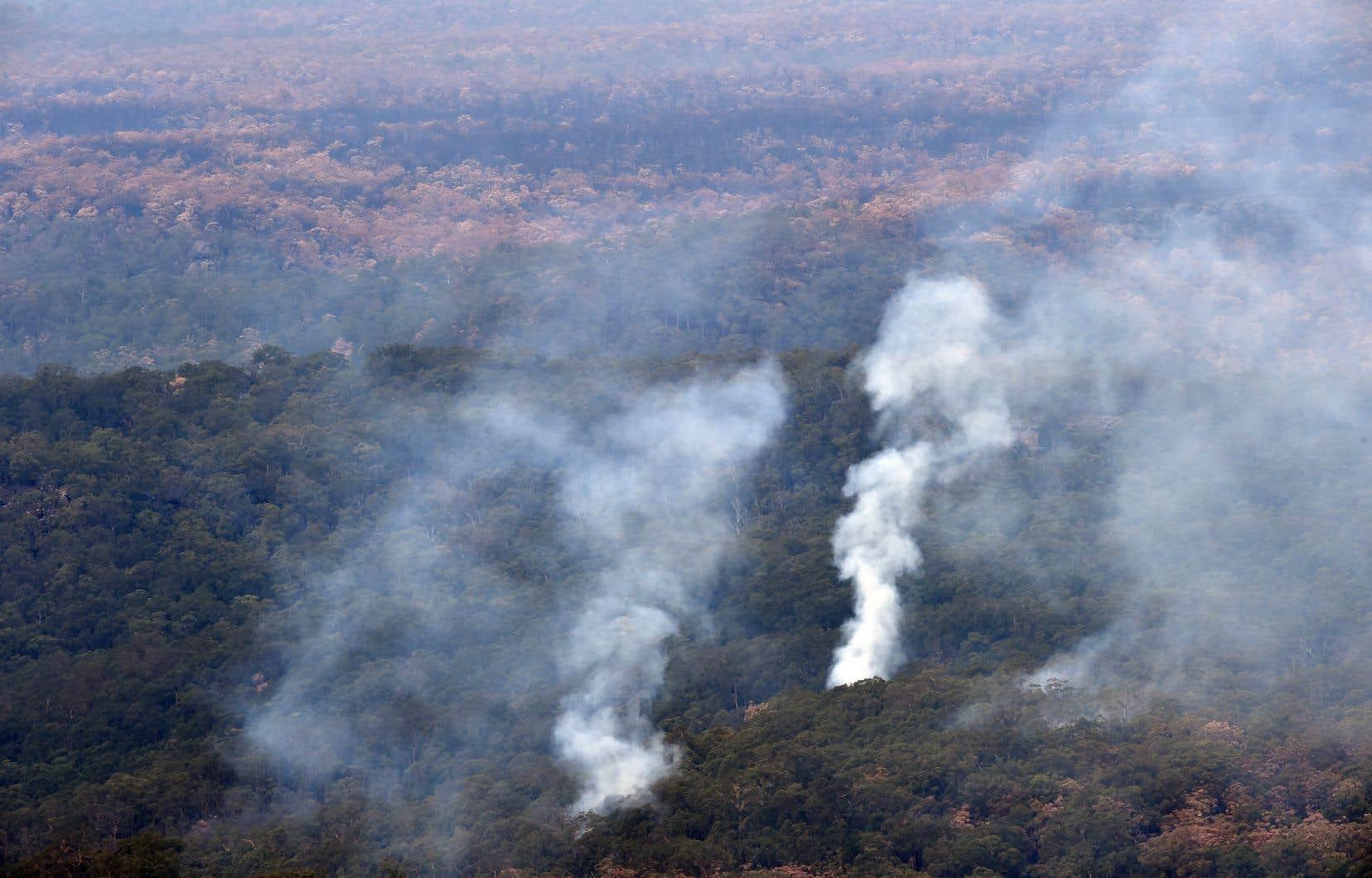 Les feux en Australie ont dévasté plusieurs millions d'hectares.