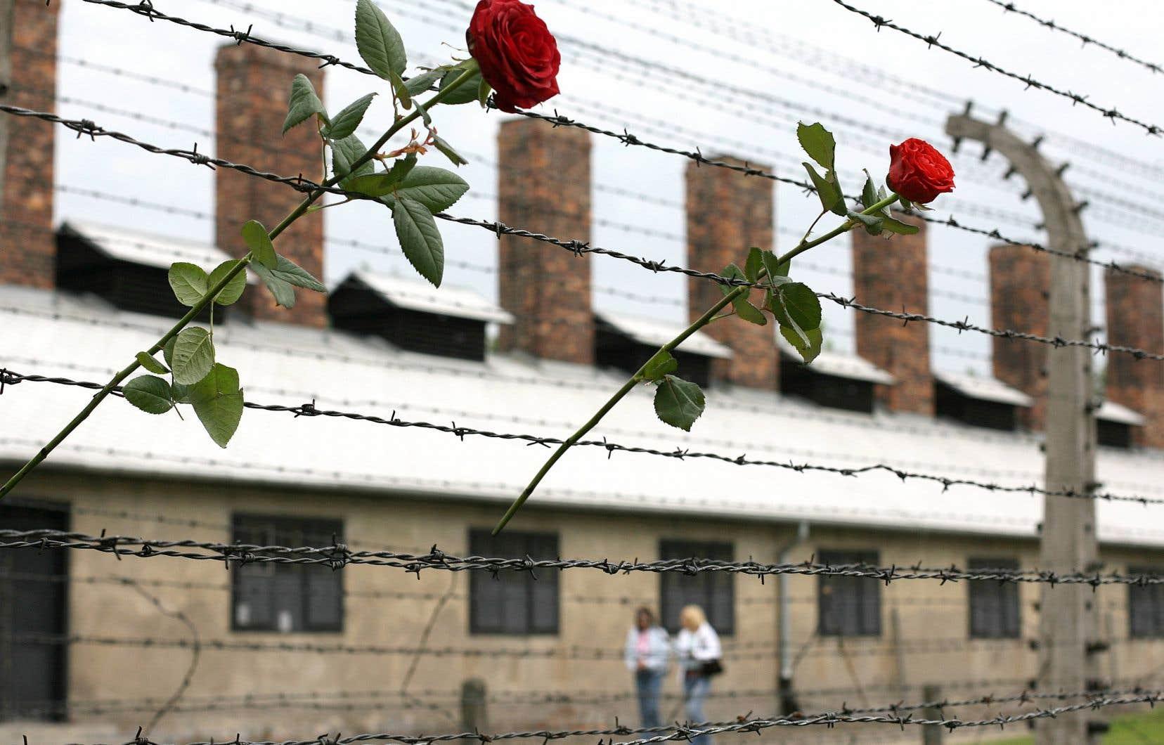 «Le 27 janvier, je me rendrai à Auschwitz pour honorer le courage de ma mère», écrit l'auteur.