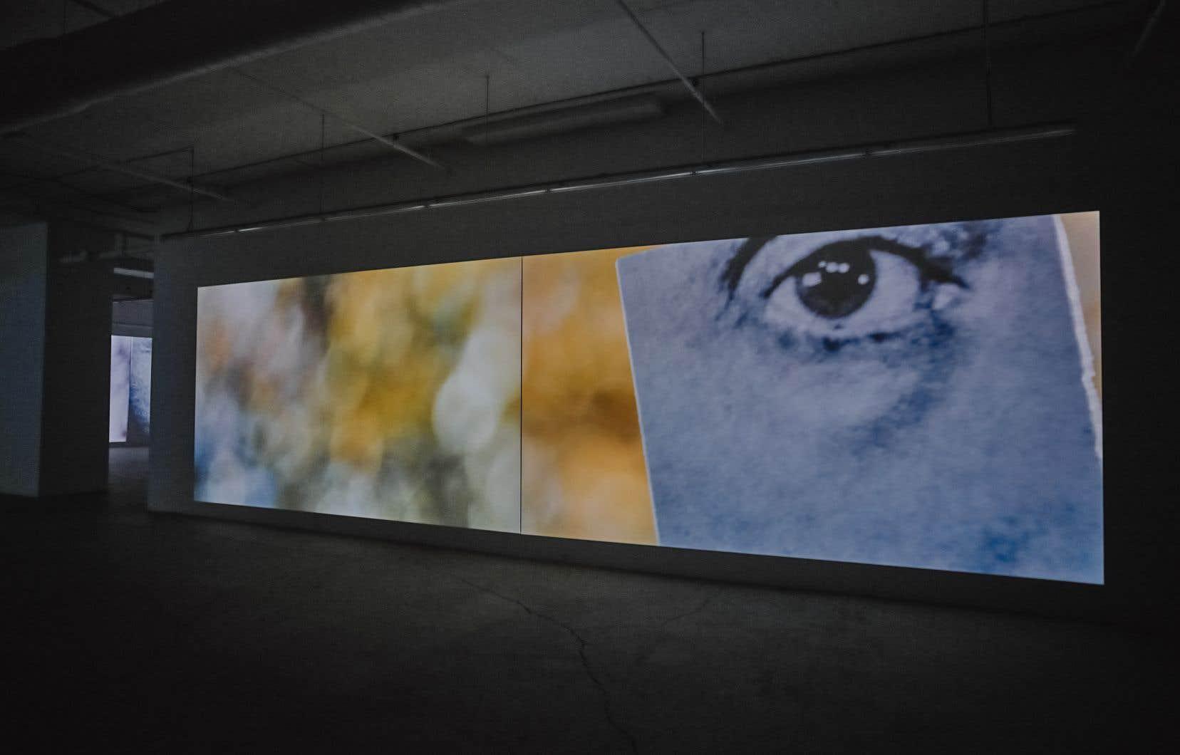 La particularité de l'installation tient à la simplicité apparente des vidéos qui se limitent à faire voir des images tourner sur elles-mêmes, détachées sur un fond très flou créant un avant-plan et un arrière-plan fort dissociés.