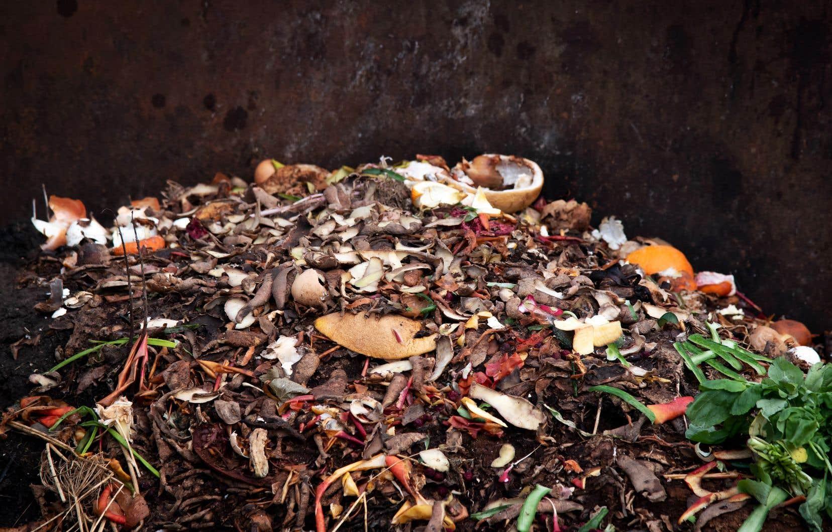 Le composte nourrit les micro-organismes dans le sol, contribuant à la bonne santé des plantes.
