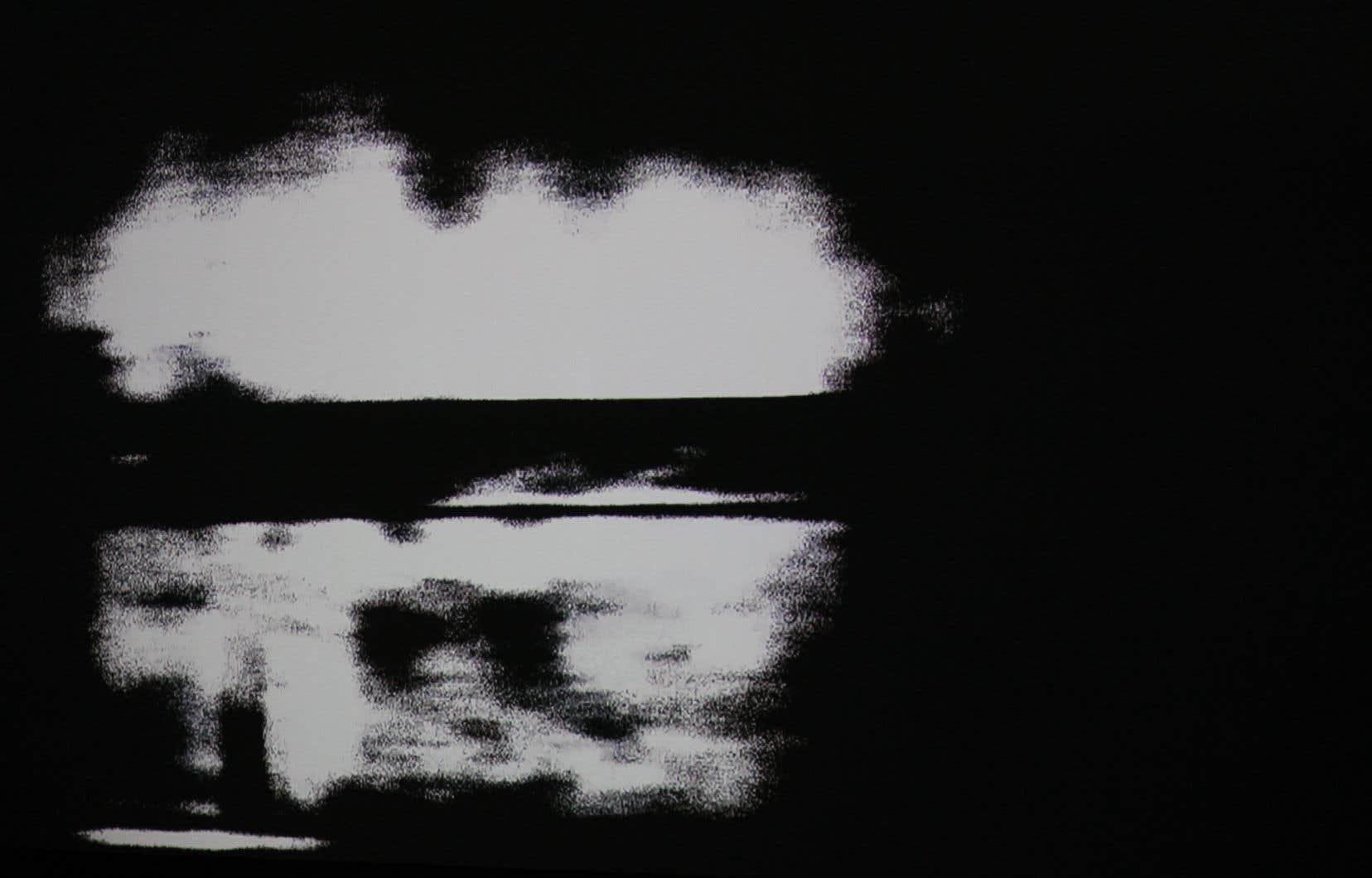 Eliazer Kramer, «Survivance», 2019