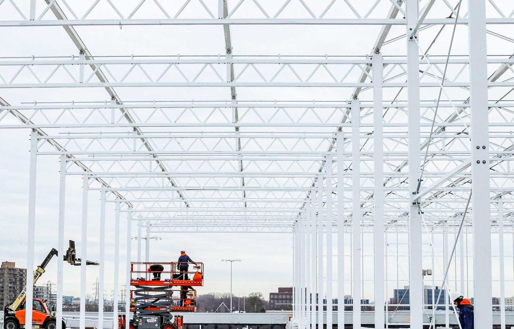 L'entreprise Lufa construit actuellement sa quatrième serre  sur les toits, dans l'arrondissement de Saint-Laurent, à Montréal.