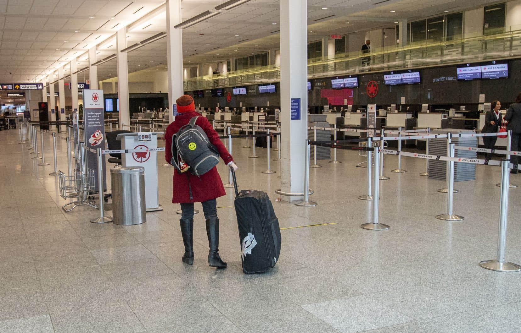 Une rare  voyageuse allait s'enregistrer à l'aéroport de Montréal, lundi.