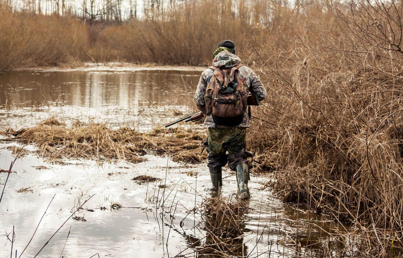 Le permis de chasse et les certifications demeurent nécessaires, mais il seront beaucoup plus difficiles à obtenir cette année en raison de la pandémie.