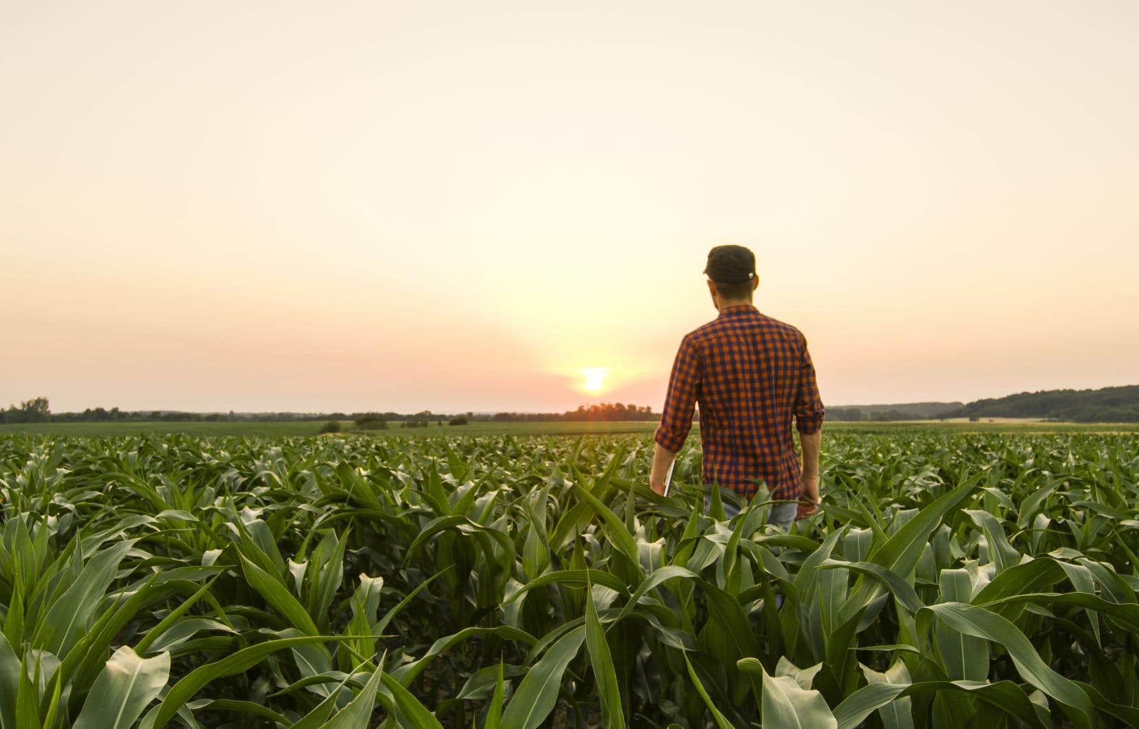 «On peut se nourrir entièrement de notre agriculture canadienne et québécoise, c'est possible», assure le président de l'UPA.