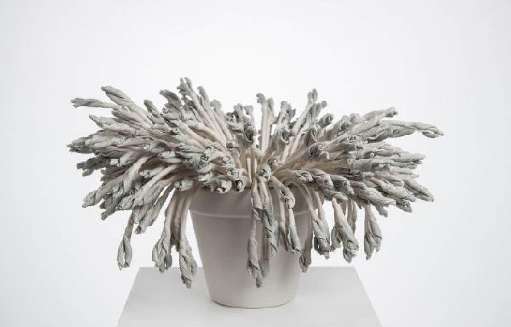 L'œuvre «Métaphores mortes» d'Amélie Proulx, présentée dans le cadre de l'exposition «ce qui du monde se prélève permet à l'œil de s'ouvrir», montre des plantes en céramique.