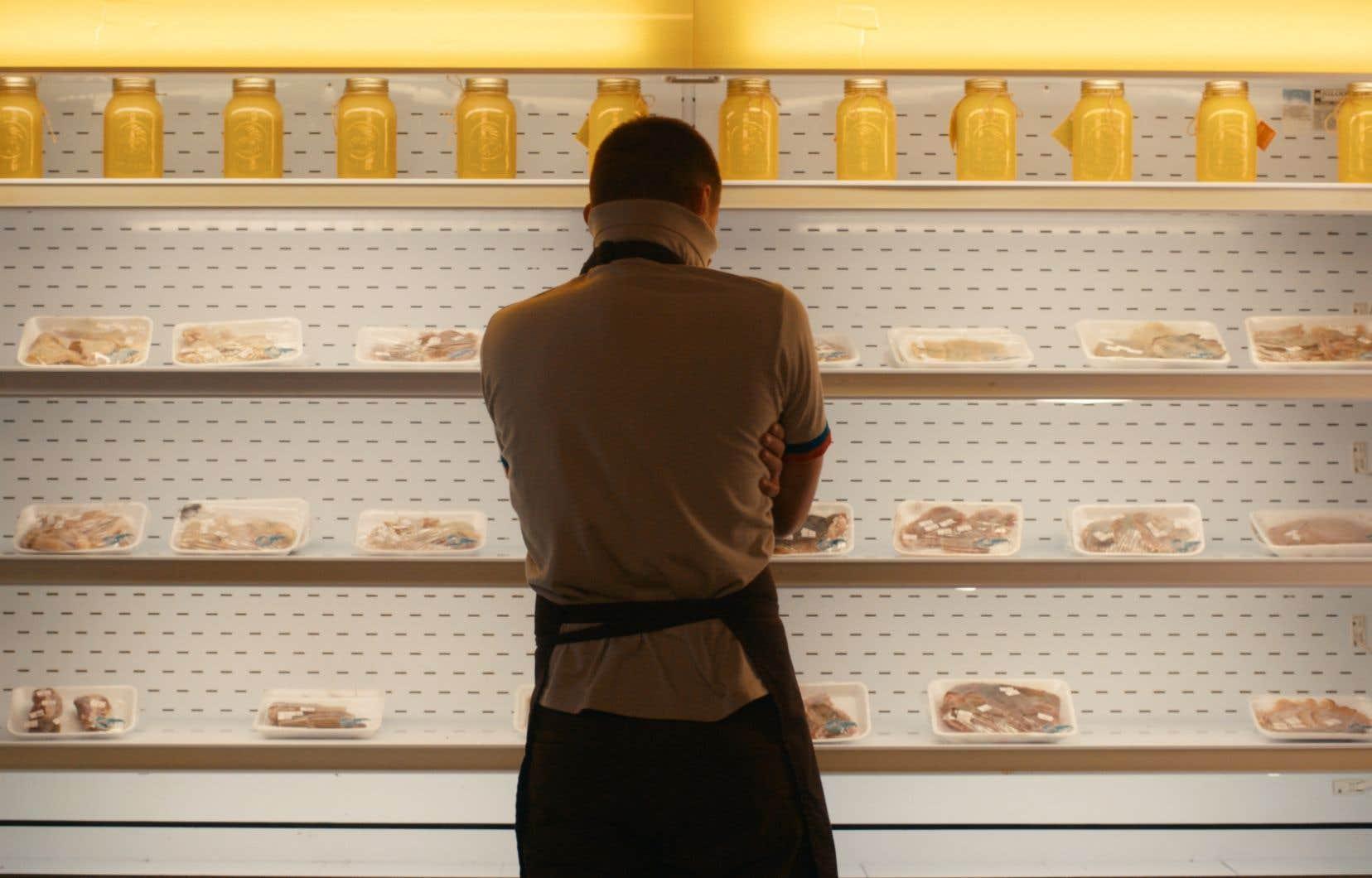 Incursion dans le quotidien très tranquille des employés de nuit d'une épicerie.