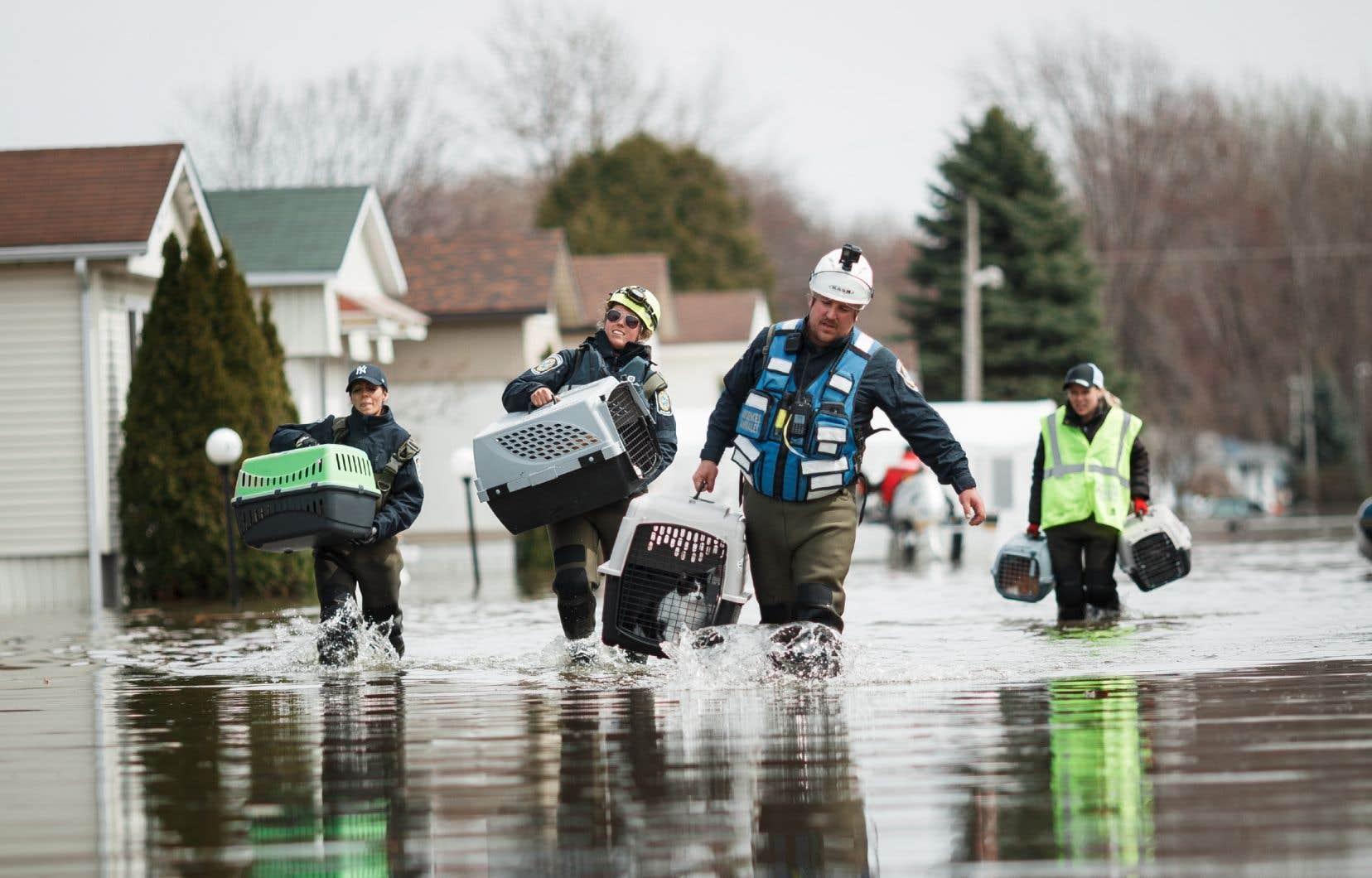 Le 27 avril 2019, la digue bordant la municipalité de Sainte-Marthe-sur-le-Lac cédait, forçant l'évacuation de 6000 résidents.