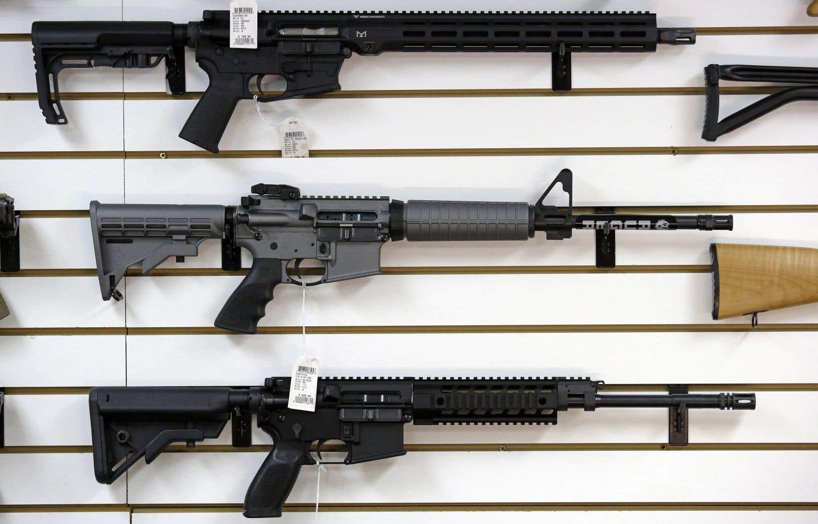 Les propriétaires qui avaient acheté les types d'arme visés en toute légalité pourront les remettre aux autorités au prix du marché.
