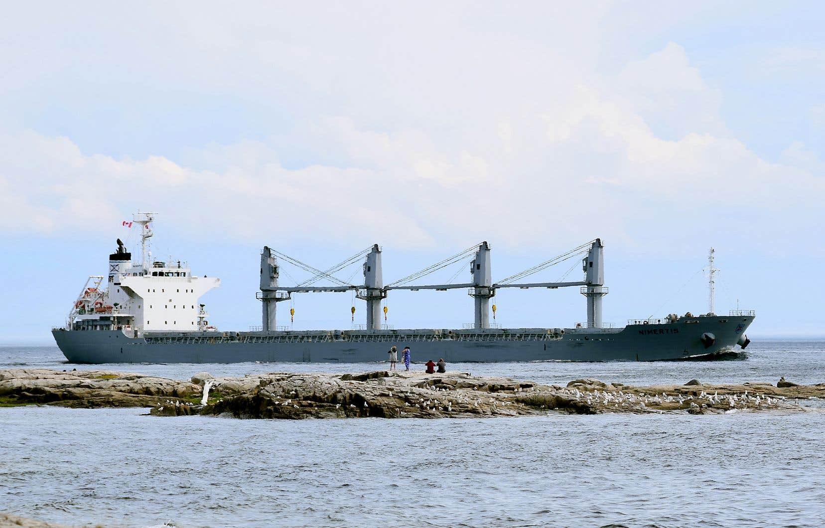 Les navires qui exporteront le gaz naturel liquéfié en passant par le Saguenay seront deux fois plus imposants que ce vraquier, photographié à l'embouchure du fjord.