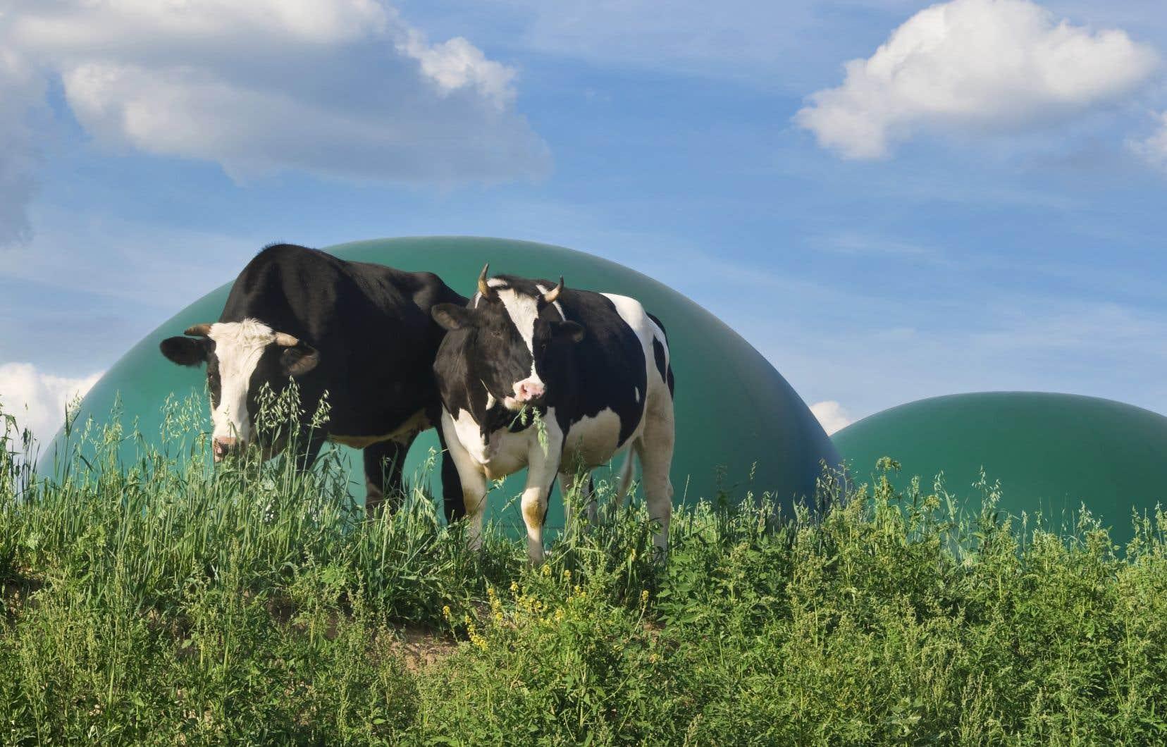 Avec le fonds d'investissement GNR Québec Capital, des partenaires, notamment du milieu agricole ou municipal, pourront avoir accès au capital et à l'expertise nécessaire leur permettant de développer et d'exploiter des installations de traitement des déchets organiques.