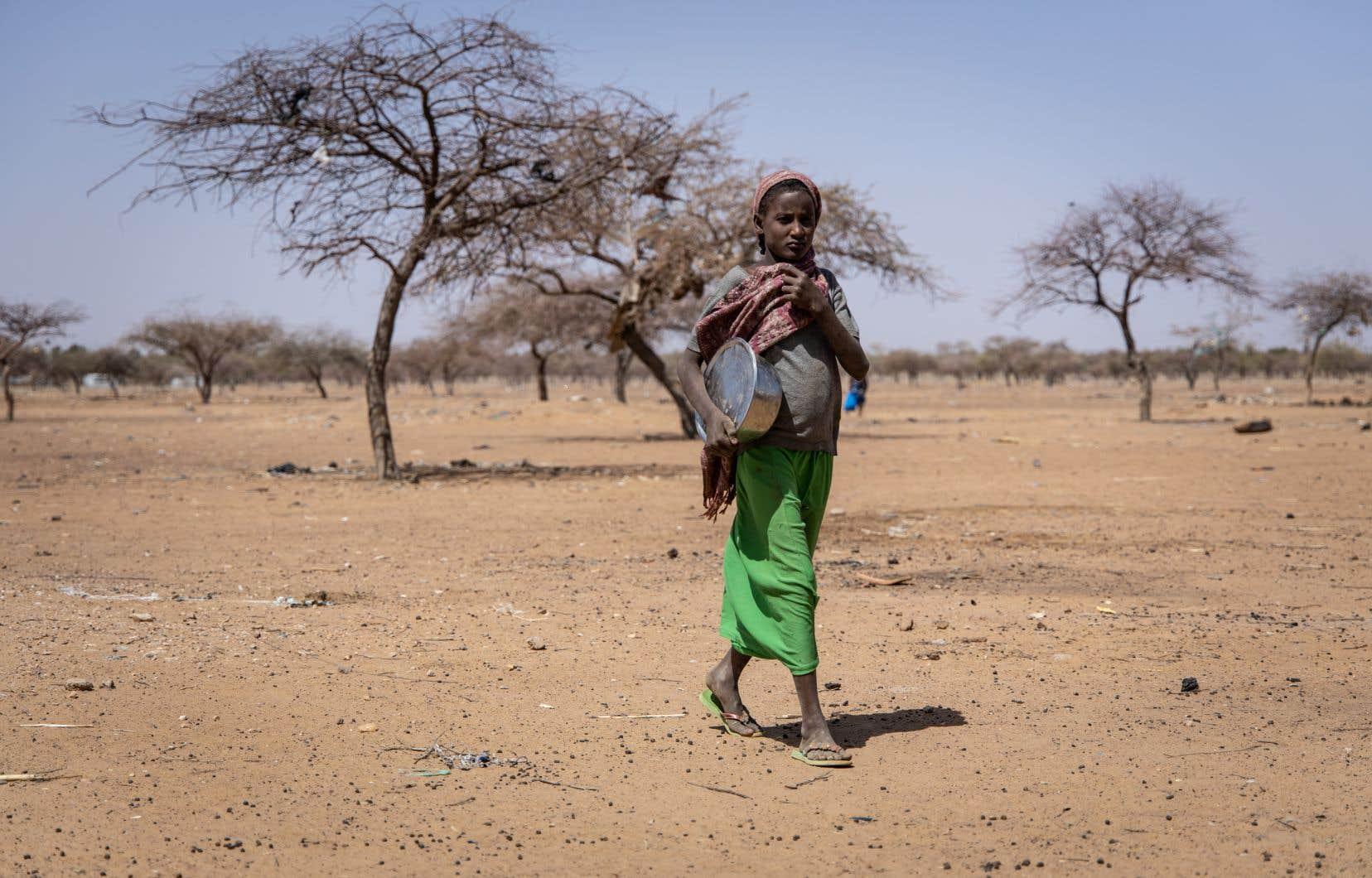 À la mi-mai, le premier pays à bénéficier d'un moratoire a été le Mali.