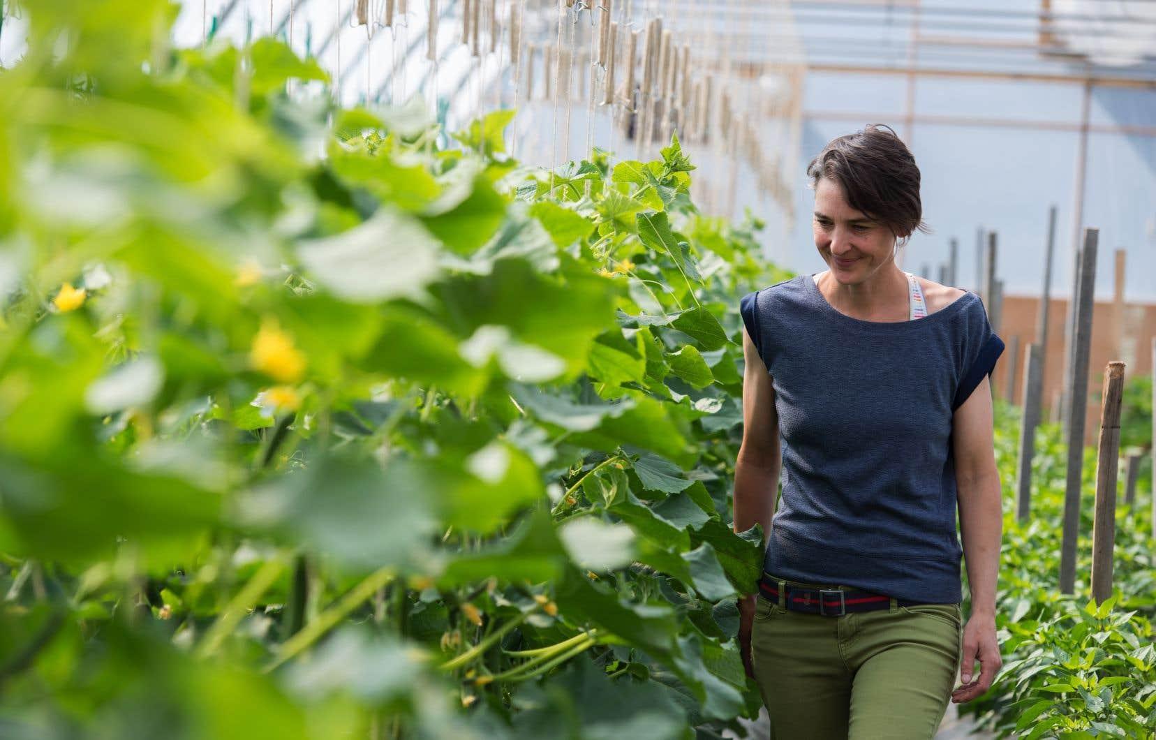 La plateforme souhaite créer un mouvement citoyen pour favoriser une transformation du système agroalimentaire du Québec.