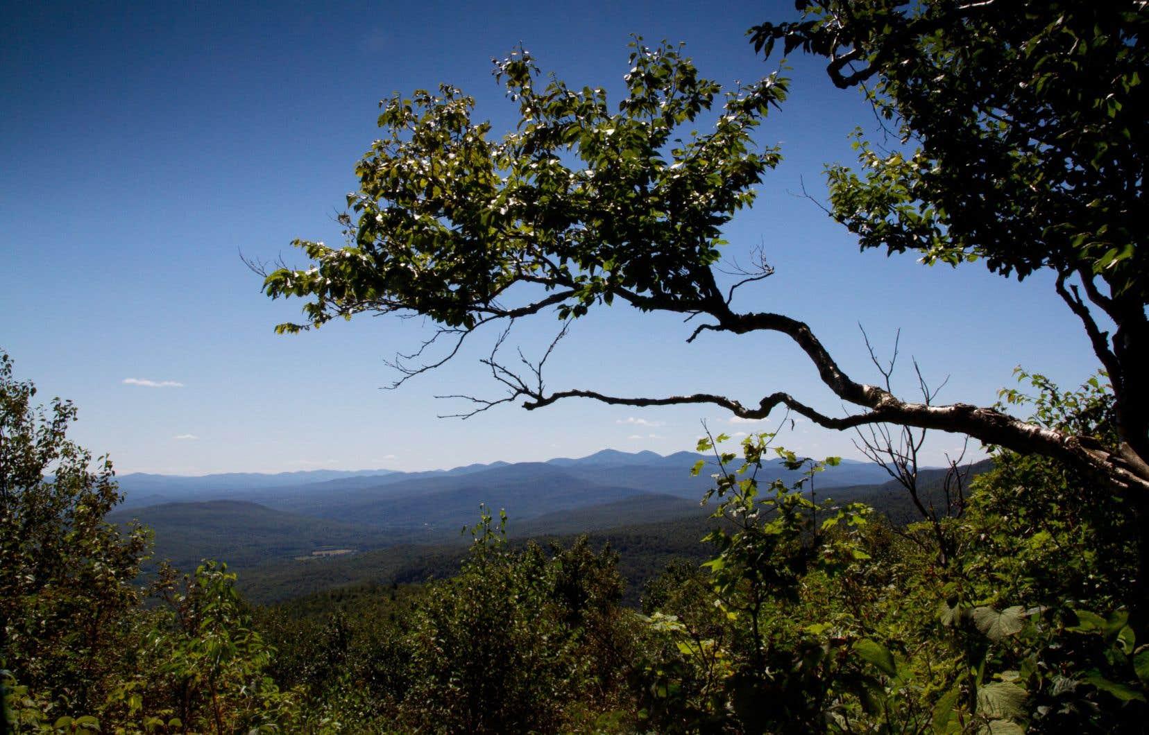 Les sentiers du Mont Singer, dans la réserve naturelle des Montagnes-Vertes, offrent un bon défi en randonnée.