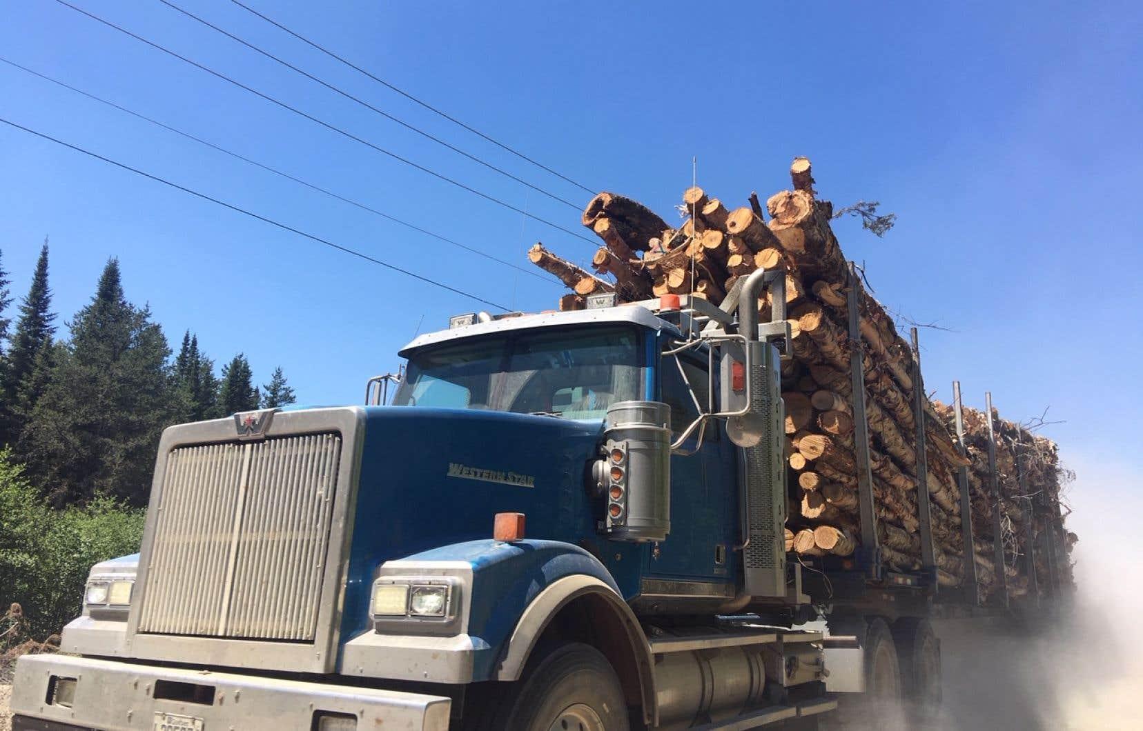Un camion transportant des troncs d'arbres vers le Sud soulève un nuage de poussière sur le Chemin de Manawan au nord de St-Michel des-Saints.