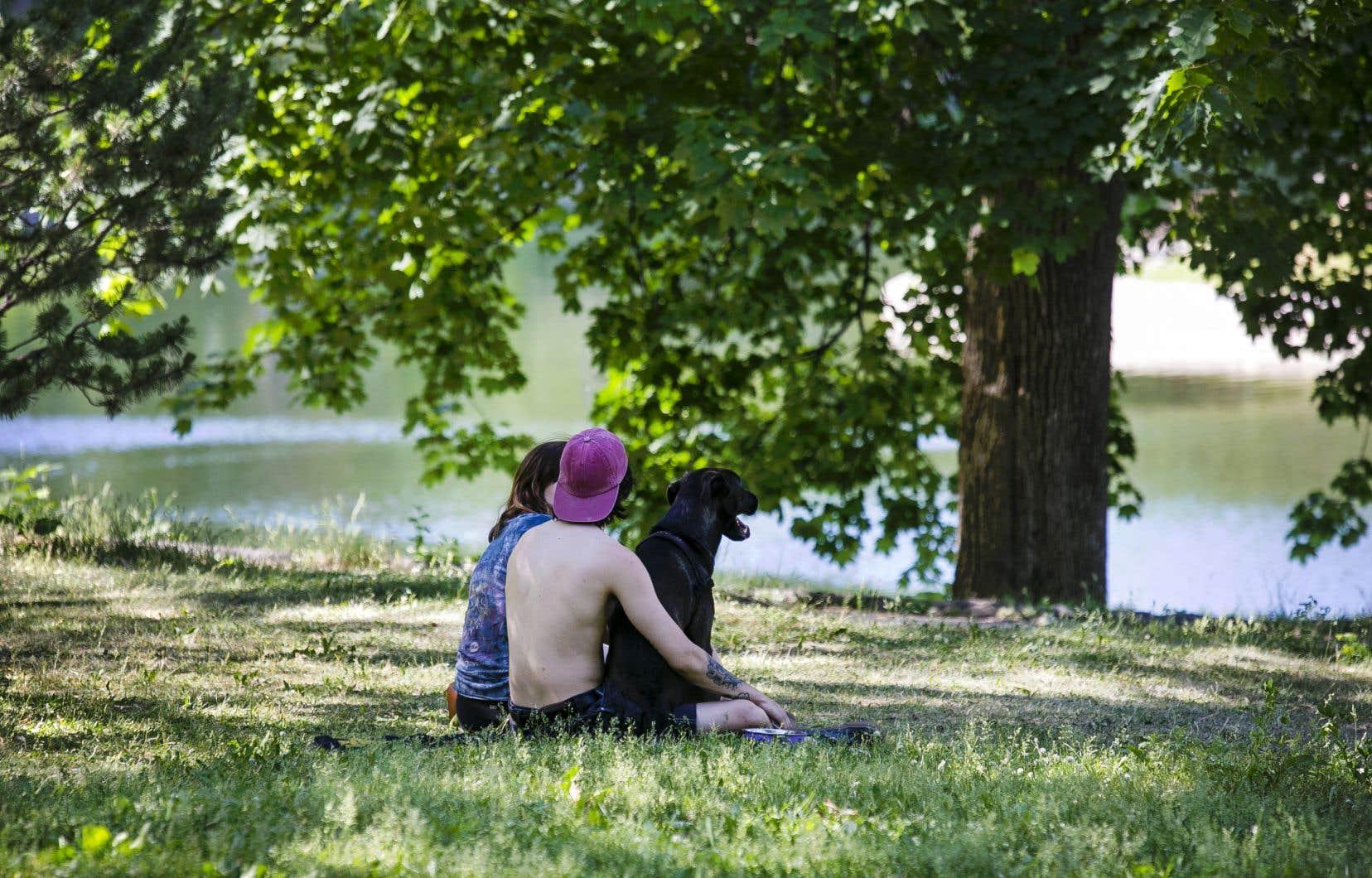 Environnement Canada a émis plusieurs alertes de chaleur, particulièrement pour les régions au sud de la province.