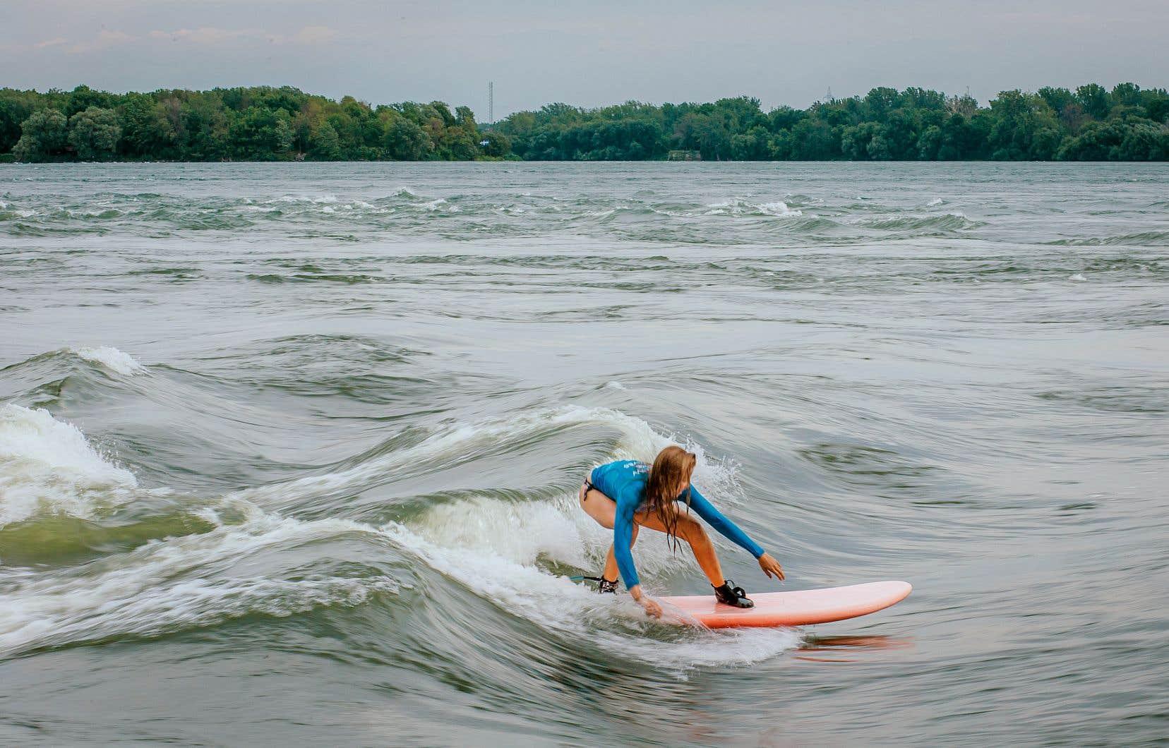 Cet été, ils sont plus que d'habitude à surfer sur la Vague à Guy.