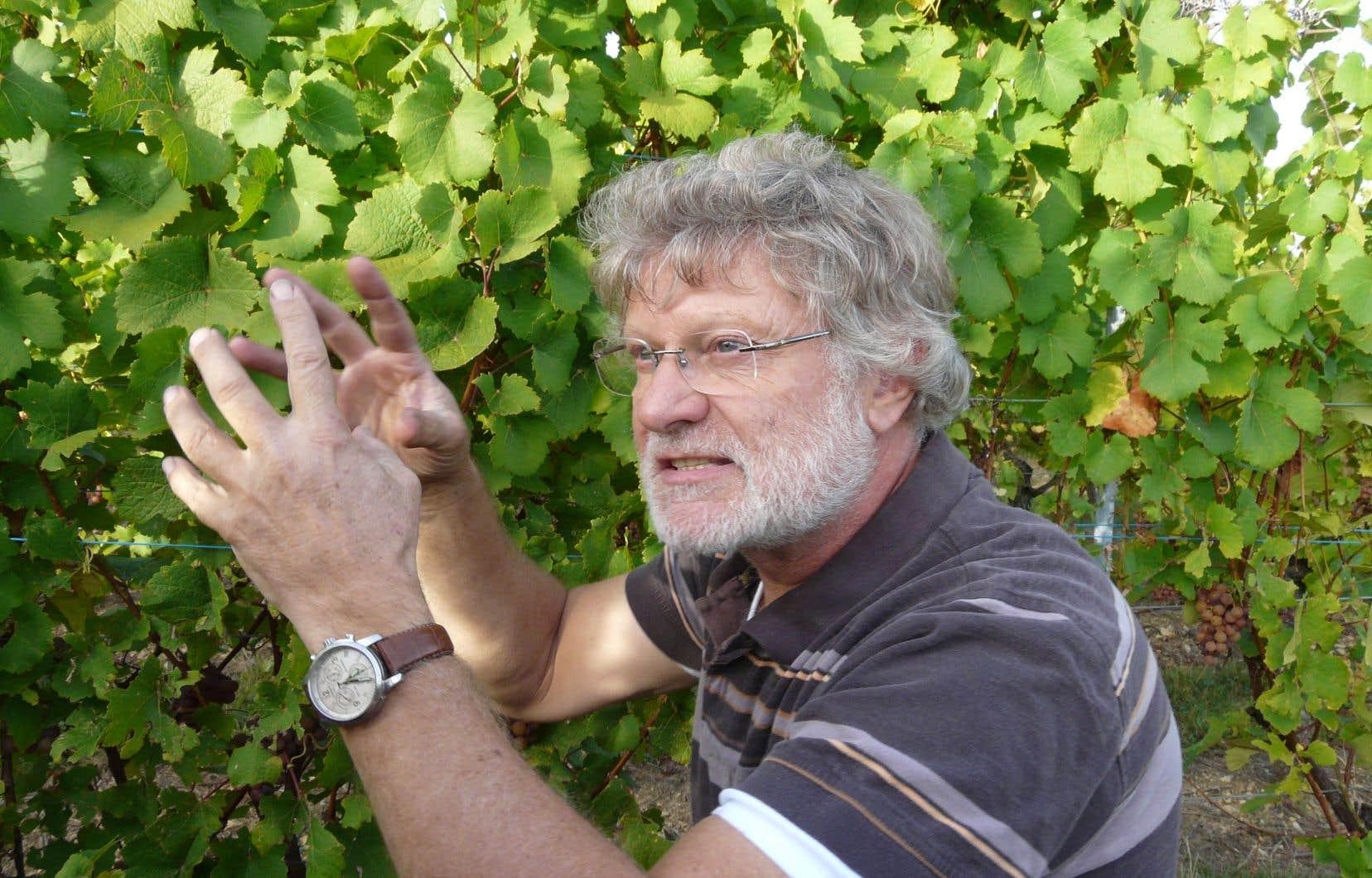 Le vigneron alsacien Jean-Michel Deiss affirme que la production est à la fois compliquée et exaltante cette année.