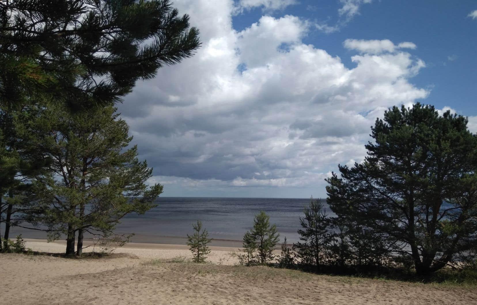 L'immense lac Ladoga, entouré de forêts, au nord de Saint-Pétersbourg.