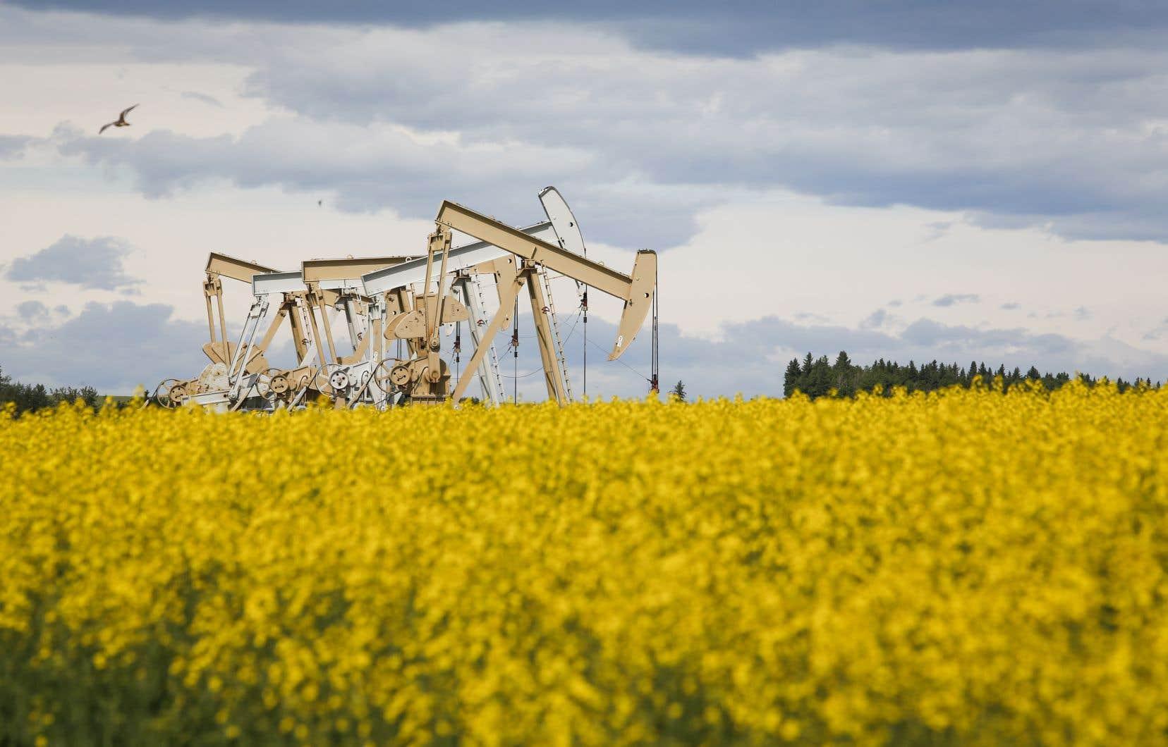 Les cours du pétrole ont chuté durant la crise sanitaire, au point de tomber même brièvement en territoire négatif.