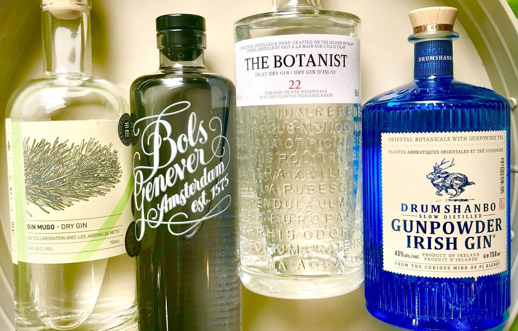 Près de 250 distillats de genièvre infusés d'herbes sont d'ailleurs, tous formats confondus, proposés actuellement à la SAQ.
