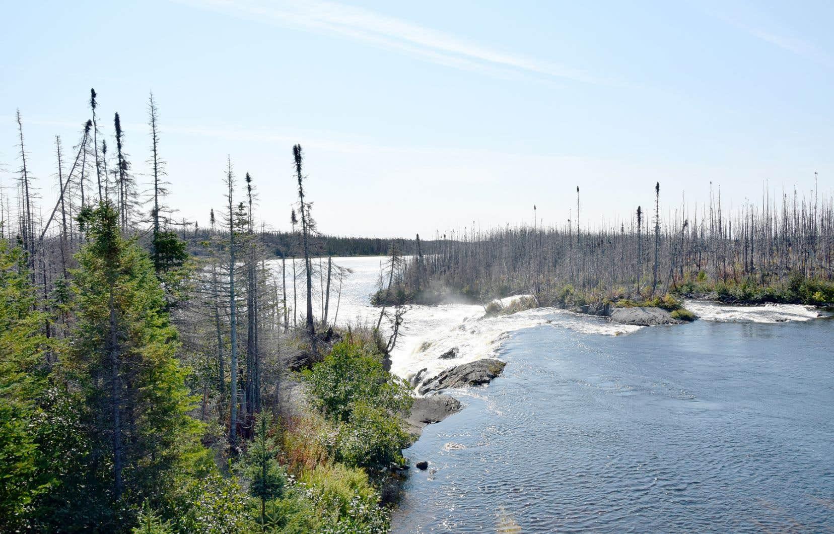 Cascades comme l'expédition Hubbard en a franchi de nombreuses. Ici, rivière Watshishou, qui prend sa source dans le Moyen Nord québécois.