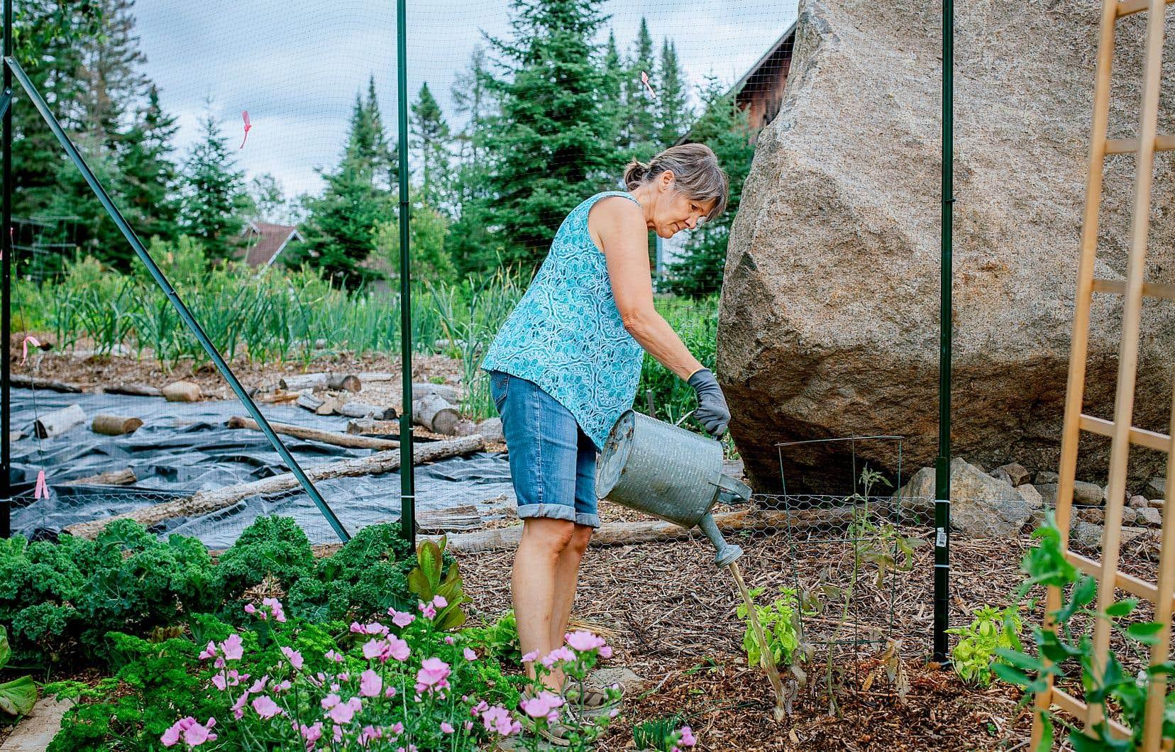 Le potager collectif, plus modeste que ce qui avait été envisagé au départ, se fait sur une base volontaire. Tout comme l'entretien des ruches et la récolte du miel. Sur la photo, la résidente Ginette Benoit.