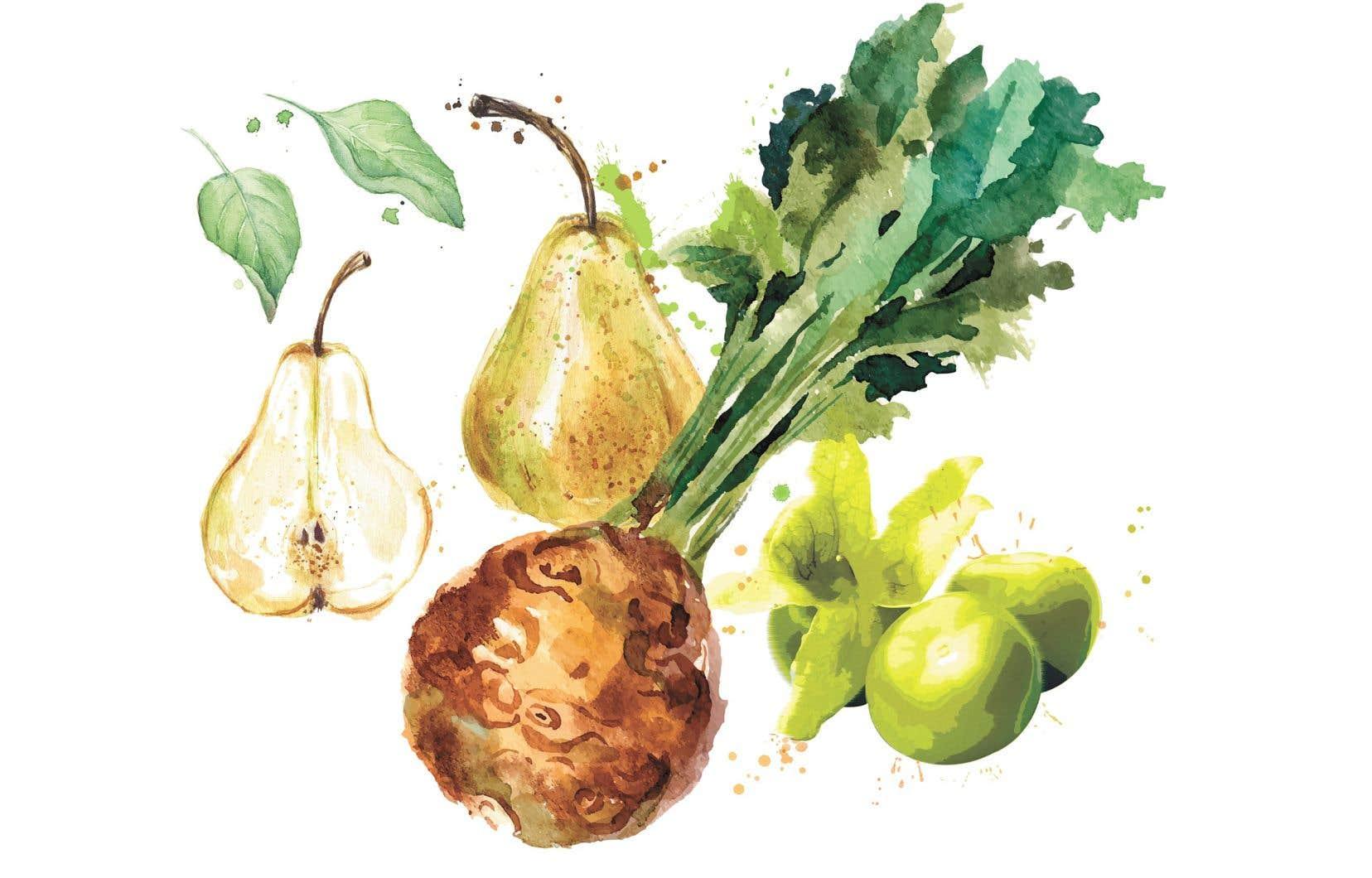 Les étals des marchés sont plus colorés que jamais par les aliments frais d'ici.