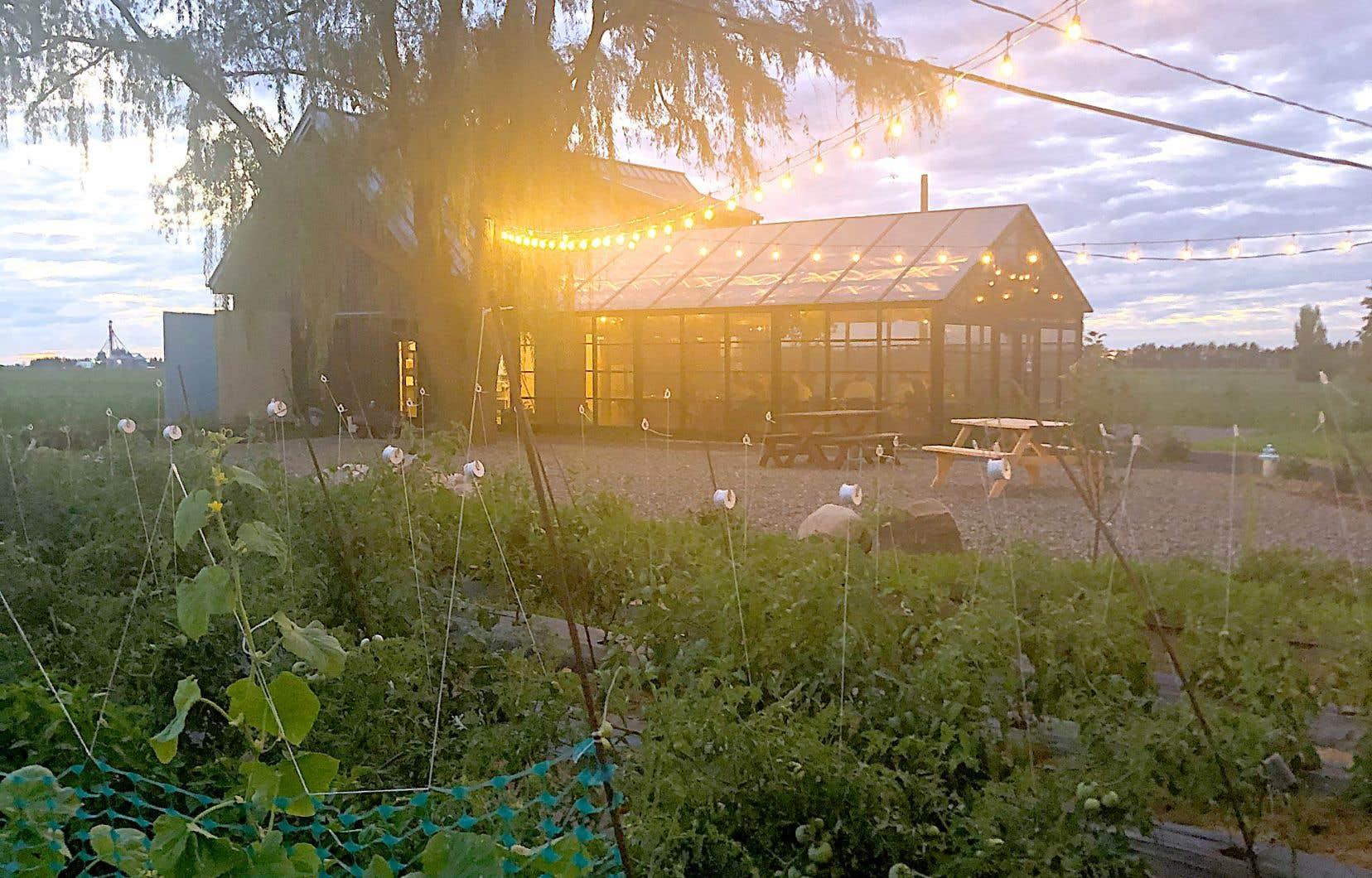 Au milieu des jardins où sont cultivés les légumes qui nous seront servis au Bika ferme et cuisine se dresse une salle vitrée pouvant accueillir une vingtaine de convives.