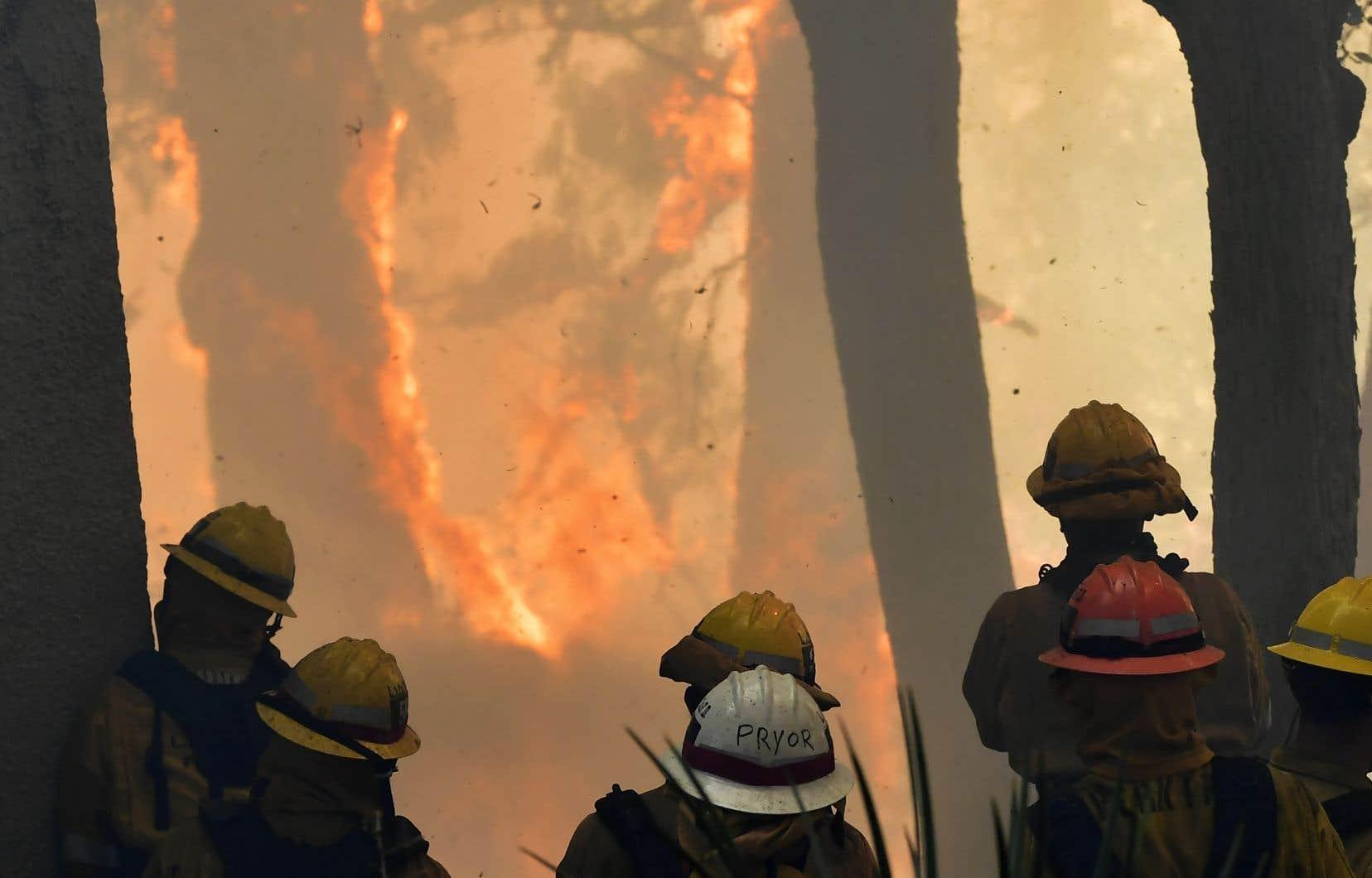 À la mi-août, alors que la saison des incendies de forêt n'est normalement pas encore commencée auxÉtats-Unis, près de 80% des pompiers disponibles dans les États touchés étaient déjà à pied d'œuvre. On a dû faire appel à des renforts des quatre coins du pays, mais aussi de l'étranger.