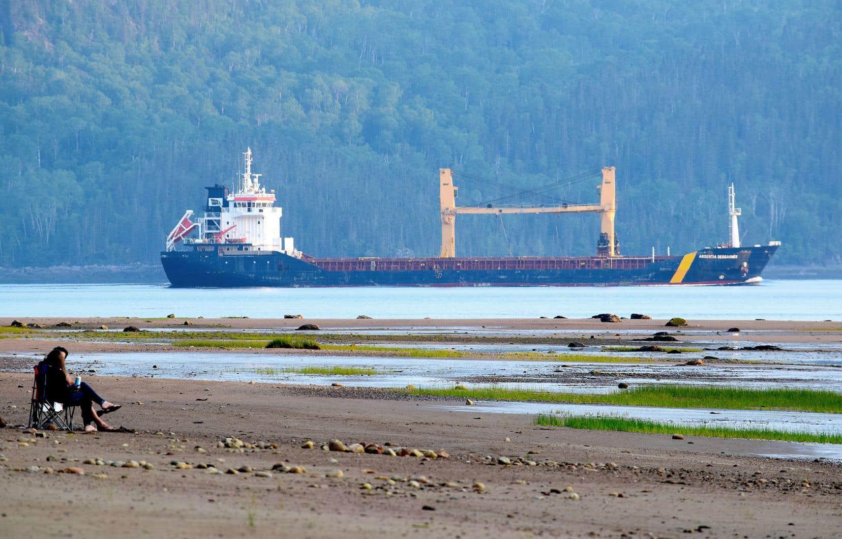 Le nombre de passages de navires sur le Saguenay devrait passer de 450 à près de 1300 par année d'ici 2030.