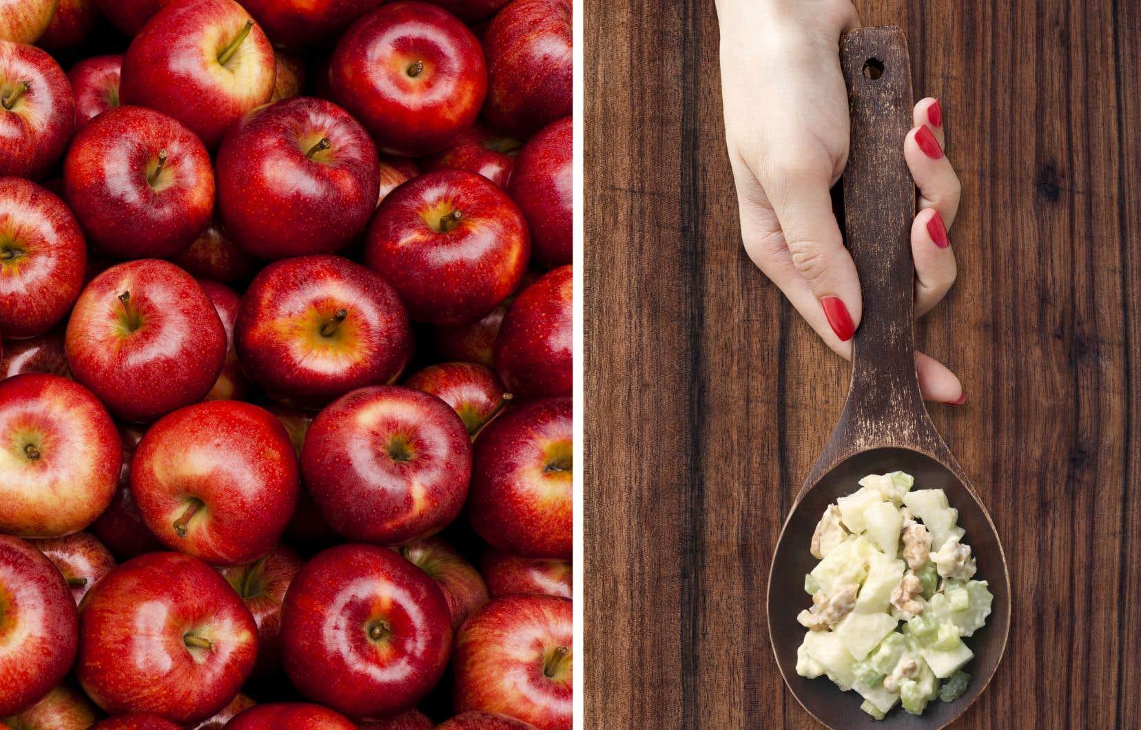 Pourquoi ne pas mettre la pomme au cœur de nos assiettes pendant la saison des récoltes?