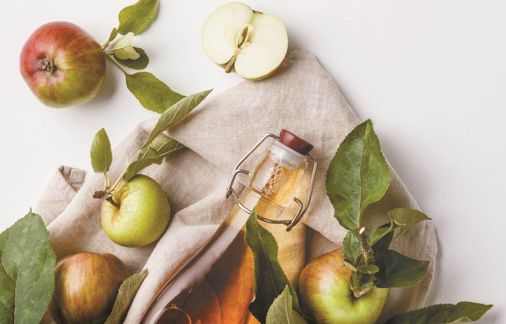 Dans les vergers écologiques, c'est l'occasion de découvrir des variétés de pommes ancestrales moins connues.