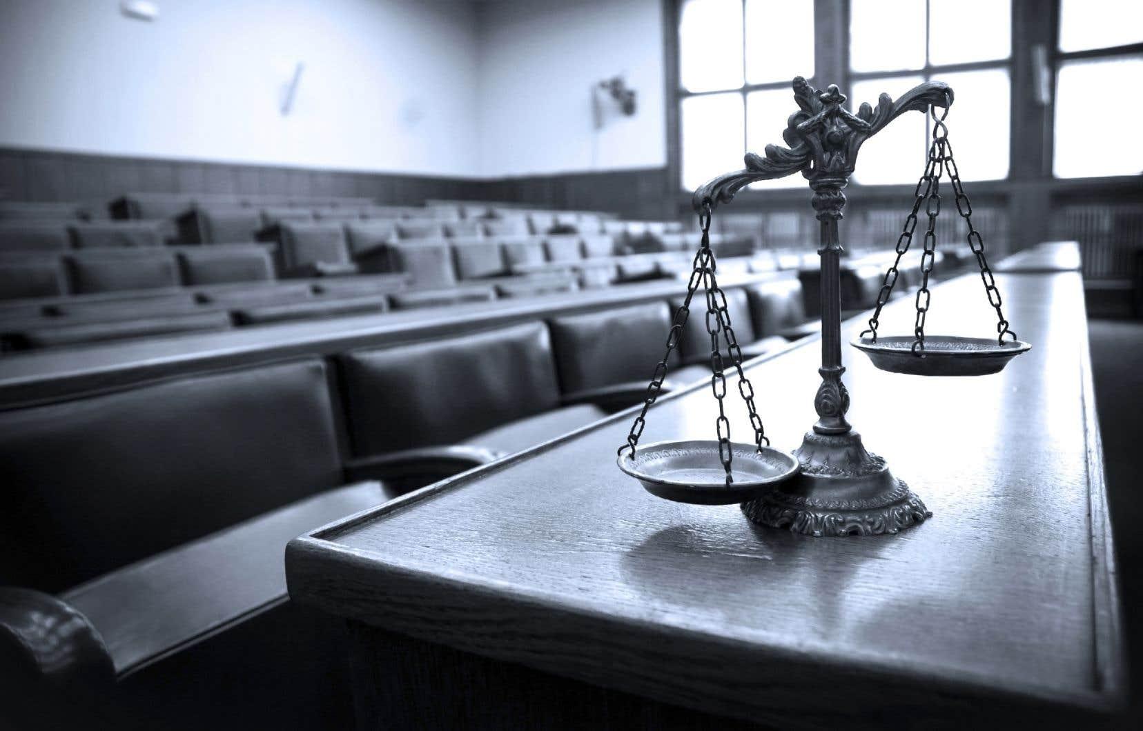 Aux États-Unis, au Canada et dans presque tous les pays de régime démocratique libéral, sauf quelques rares exceptions comme le Royaume-Uni ou la Nouvelle-Zélande, les juges reçoivent le pouvoir de faire le procès de la loi.