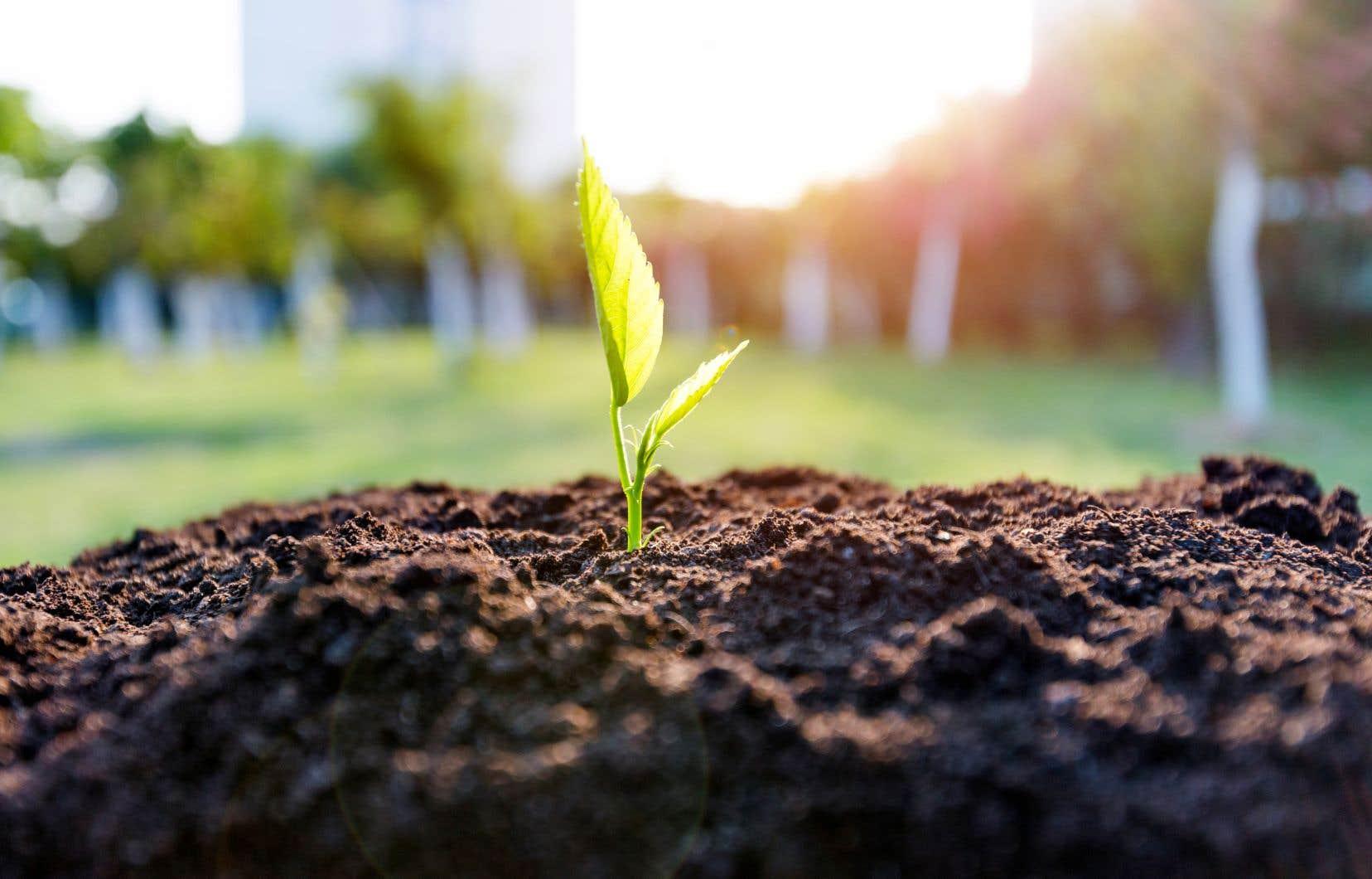 «Au quotidien, transformer positivement l'économie, ça se fait un investissement à la fois, en choisissant de financer et d'accompagner les entreprises qui avancent dans cette direction», estime l'autrice.