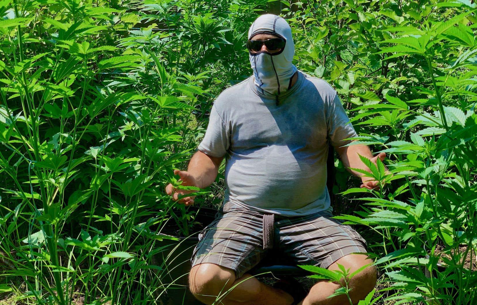 Scène tirée du documentaire «Le malaise cannabis»