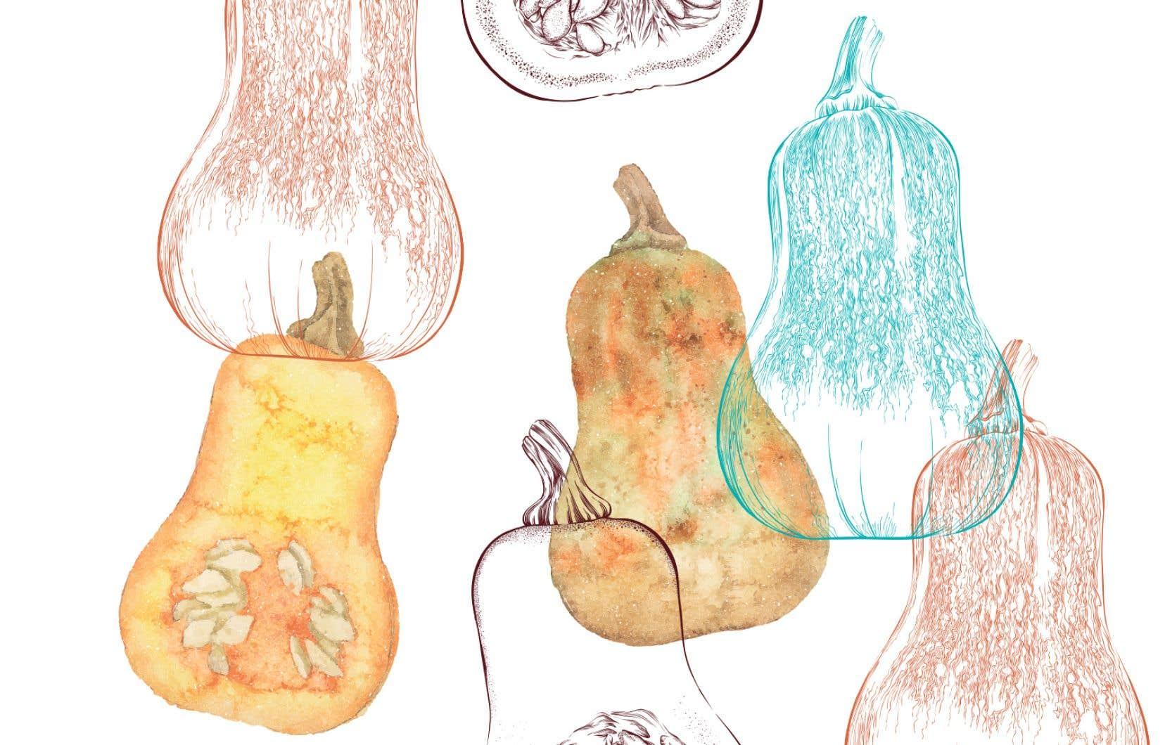 La courge butternut donne une texture soyeuse, presque crémeuse, à une foule de plats.
