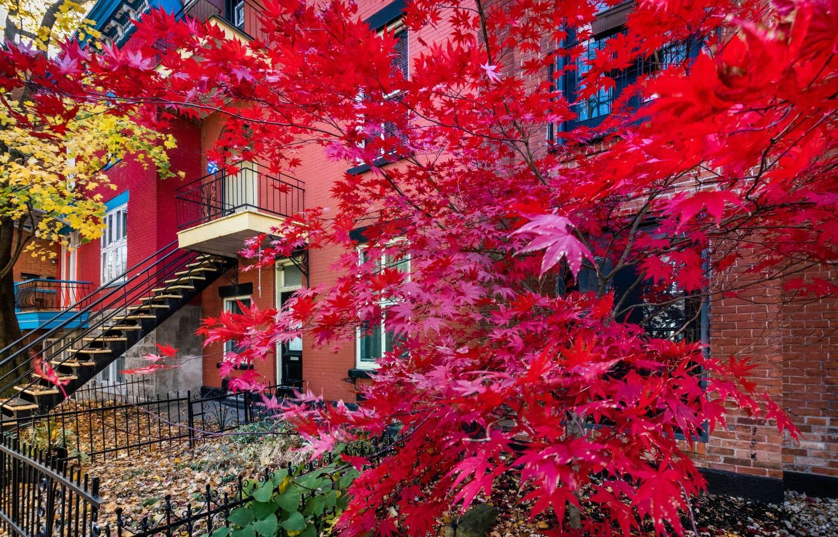 Il ne s'agit pas que de rattrapage, estime l'Association professionnelle des courtiers immobiliers du Québec.