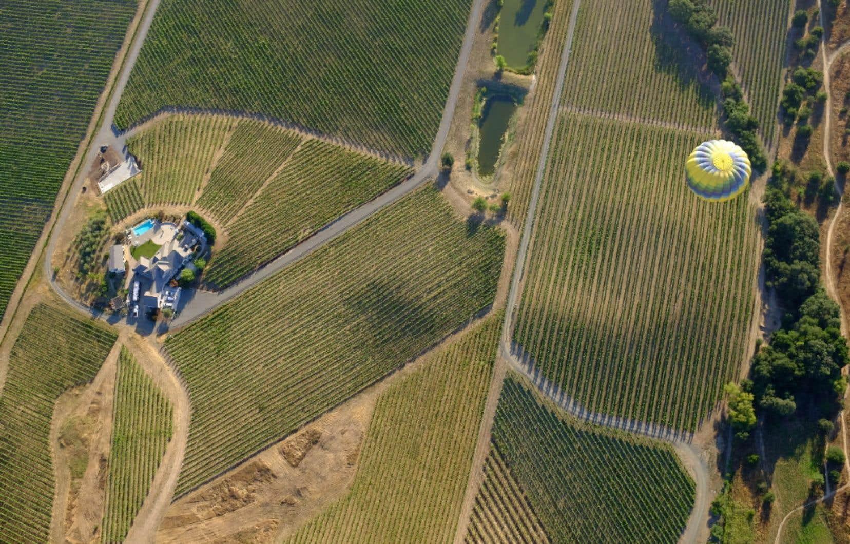 Le vignoble de la Vallée de la Napa vu des airs.
