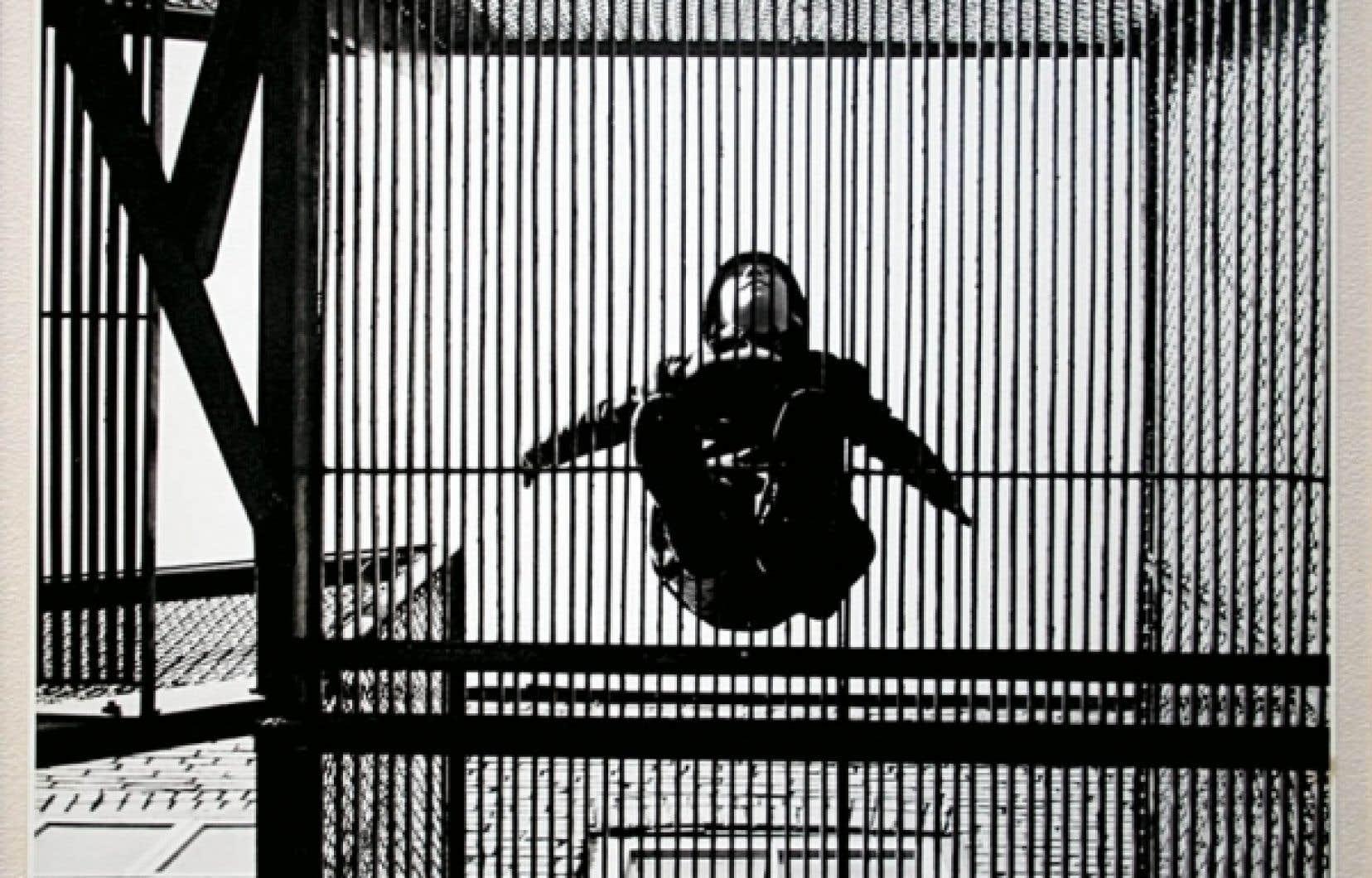 Connu du public comme peintre et graveur, Albert Dumouchel (1916-1971) fut aussi un photographe qui, avec d'autres, transforma le regard en photographie au cours des années 1950 (photo: L'oiseau en cage, 1953).<br />