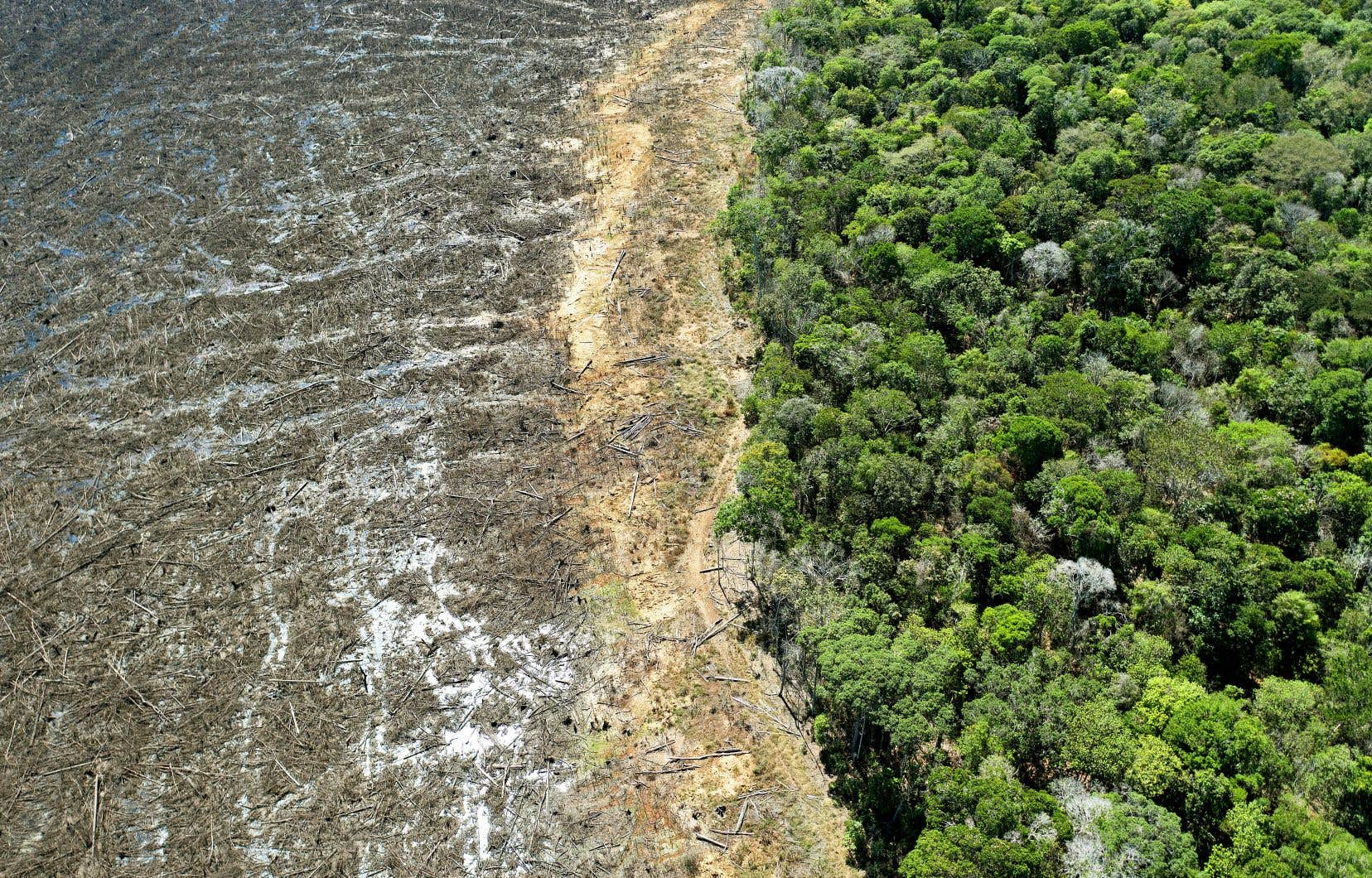 Une rupture des négociations pour un accord de libre-échange avec le Canada vise à condamner l'effet dévastateur des politiques du président Jair Bolsonaro sur la forêt amazonienne.