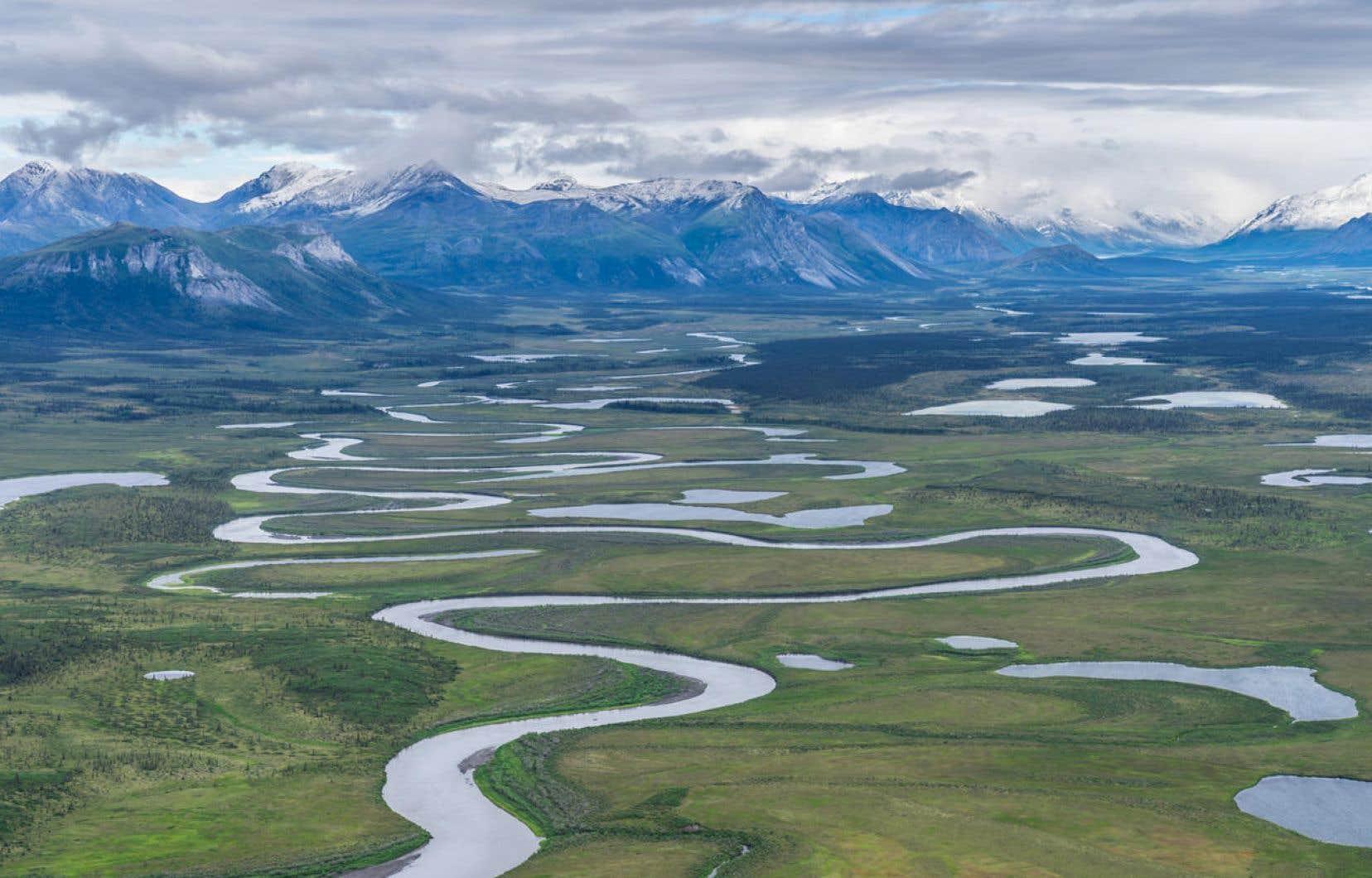 La réserve protégée depuis plus de 40ans abrite plusieurs espèces menacées par les bouleversements climatiques.