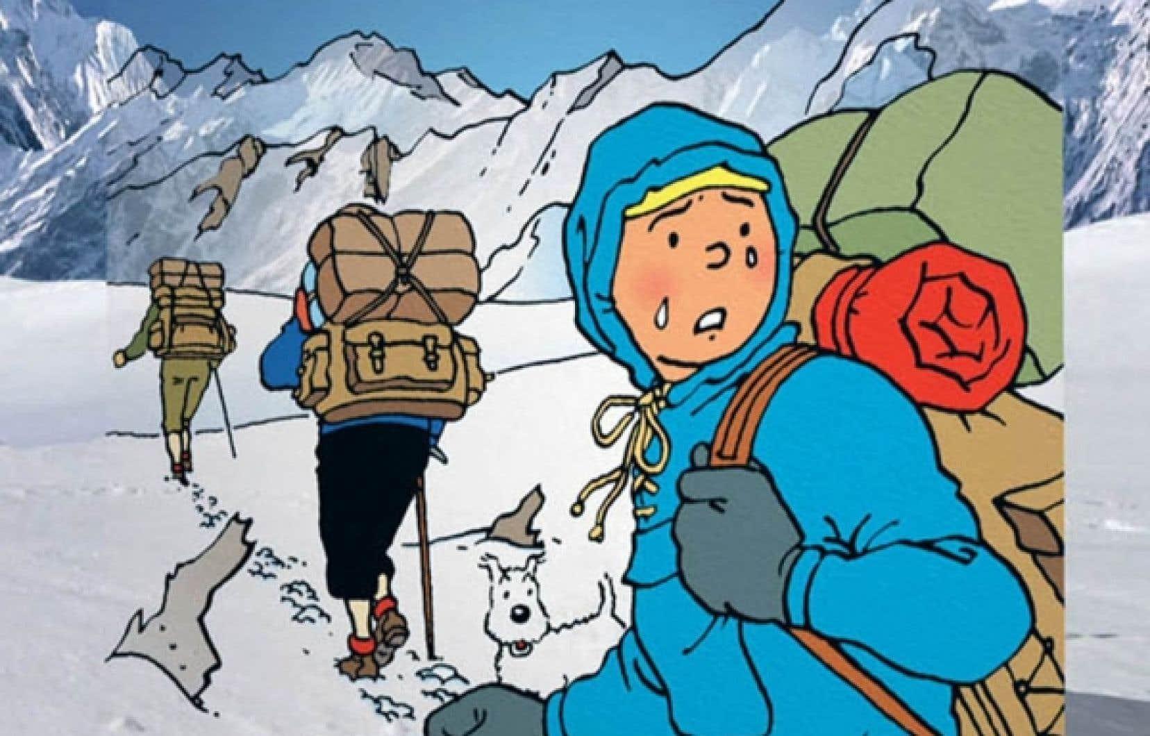 Tintin au pays du documentaire le devoir