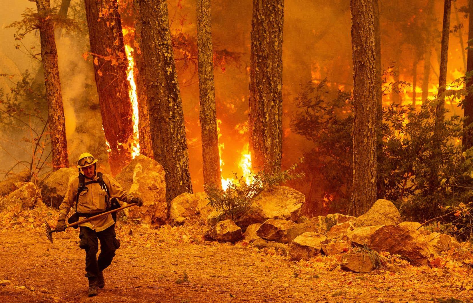 Des feux dévastateurs ont frappé la Californie à l'automne 2020, comme ici, dans la vallée de Napa, reconnue mondialement pour sa production viticole.