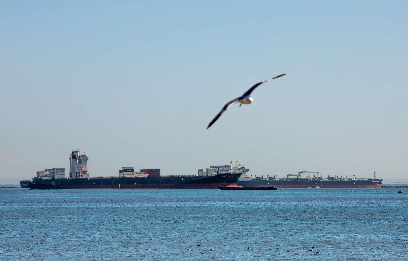 Un pétrolier et un cargo près de Long Beach. En raison d'une baisse de la demande pour le pétrole brut, les surplus ont dû être stockés au large de la Californie dans plus d'une vingtaine de pétroliers réquisitionnés au printemps dernier.